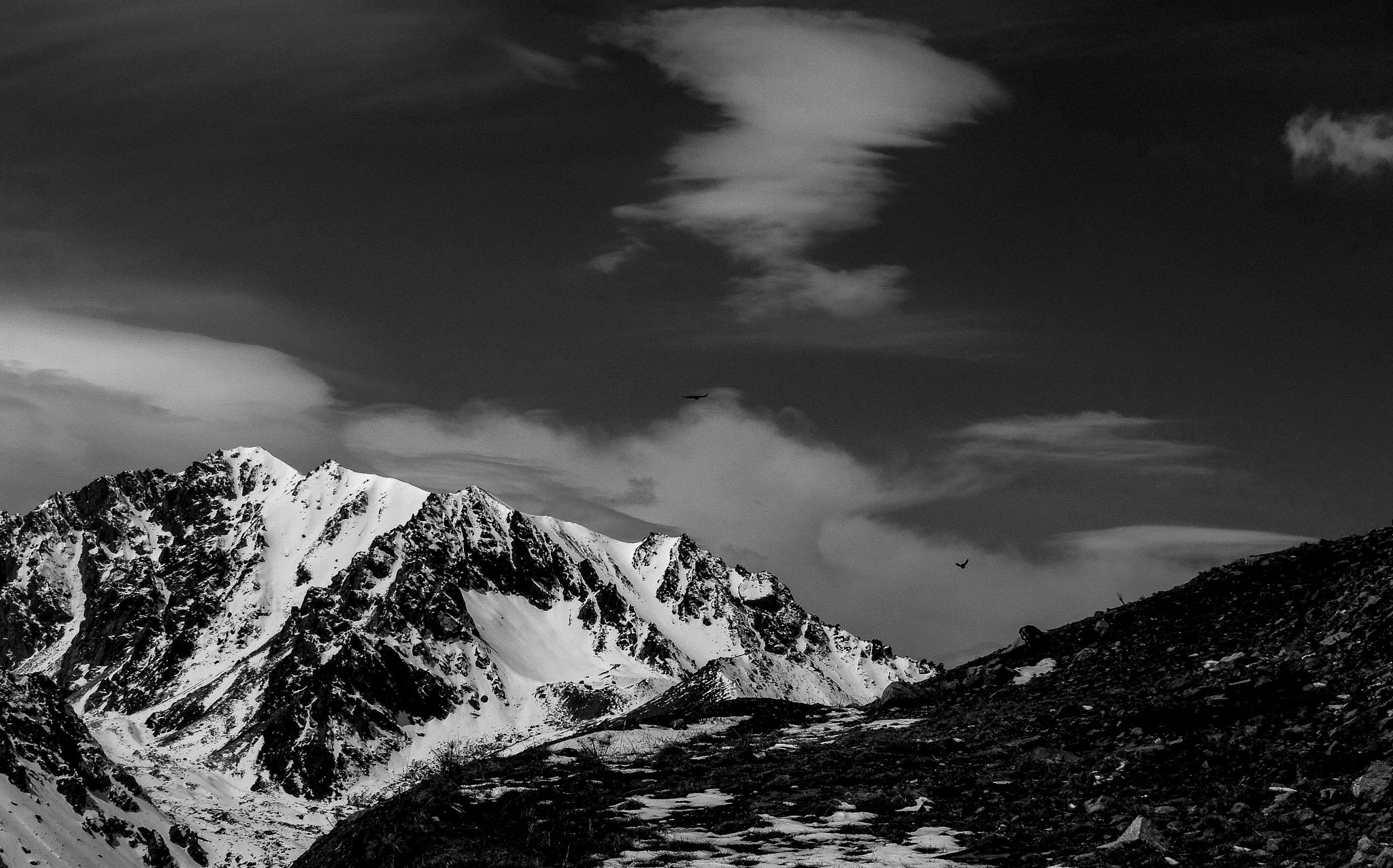 Photo in Black and White #black and white #landscape #mountains