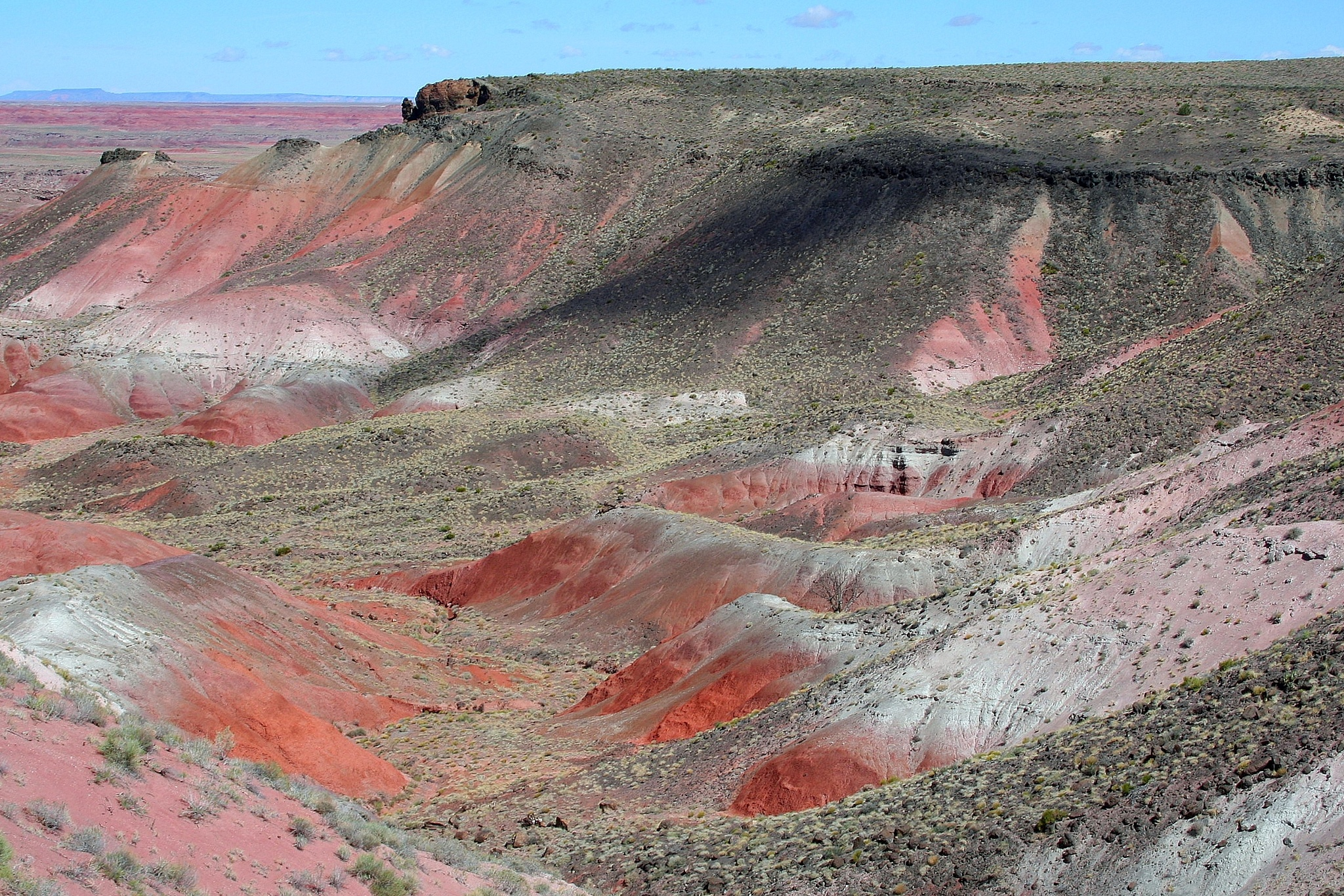 Painted Desert, Petrified Forest NP by katze