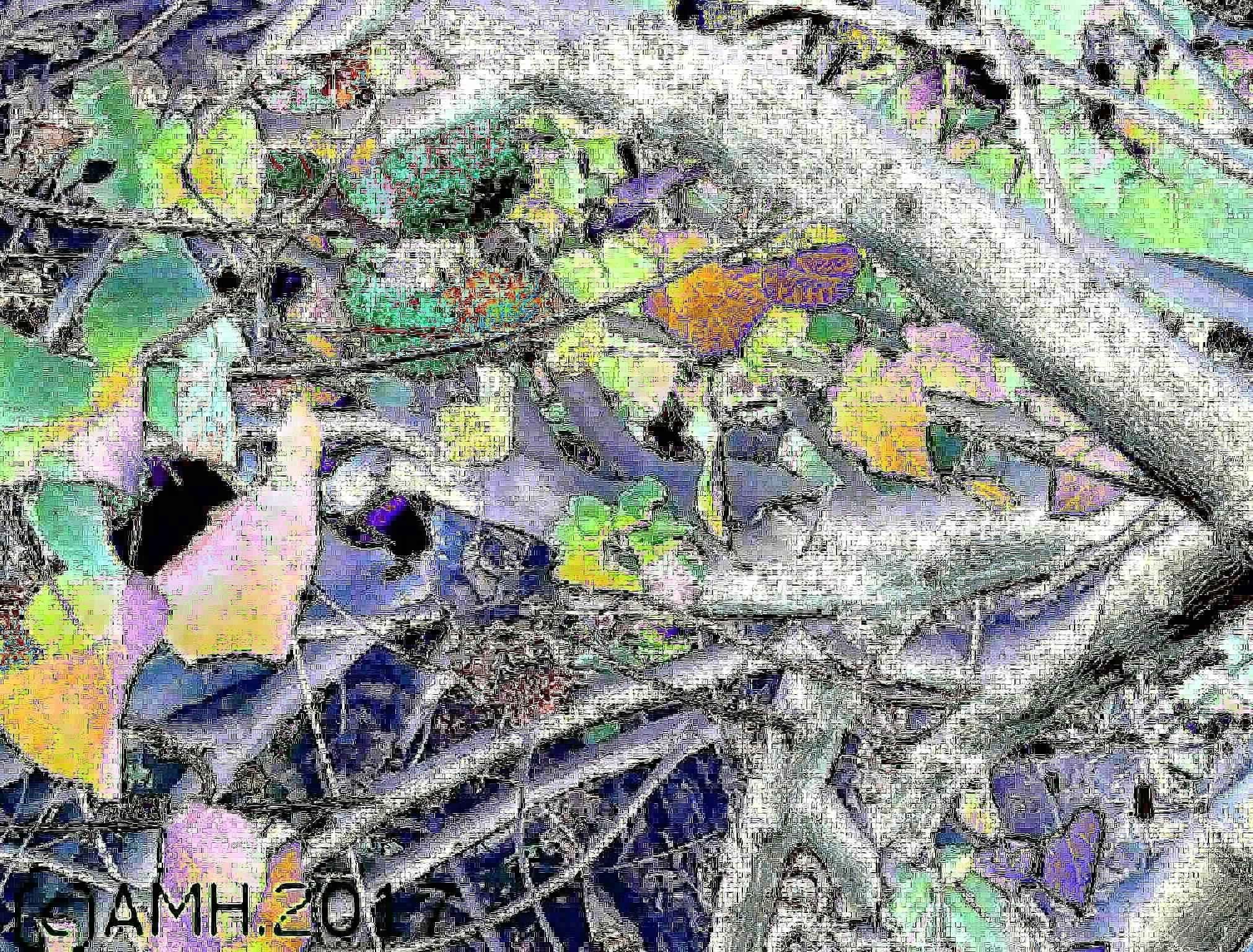 A digital painting from Dompeya tree in Mijas Costa, Spain by ailahokkanen59