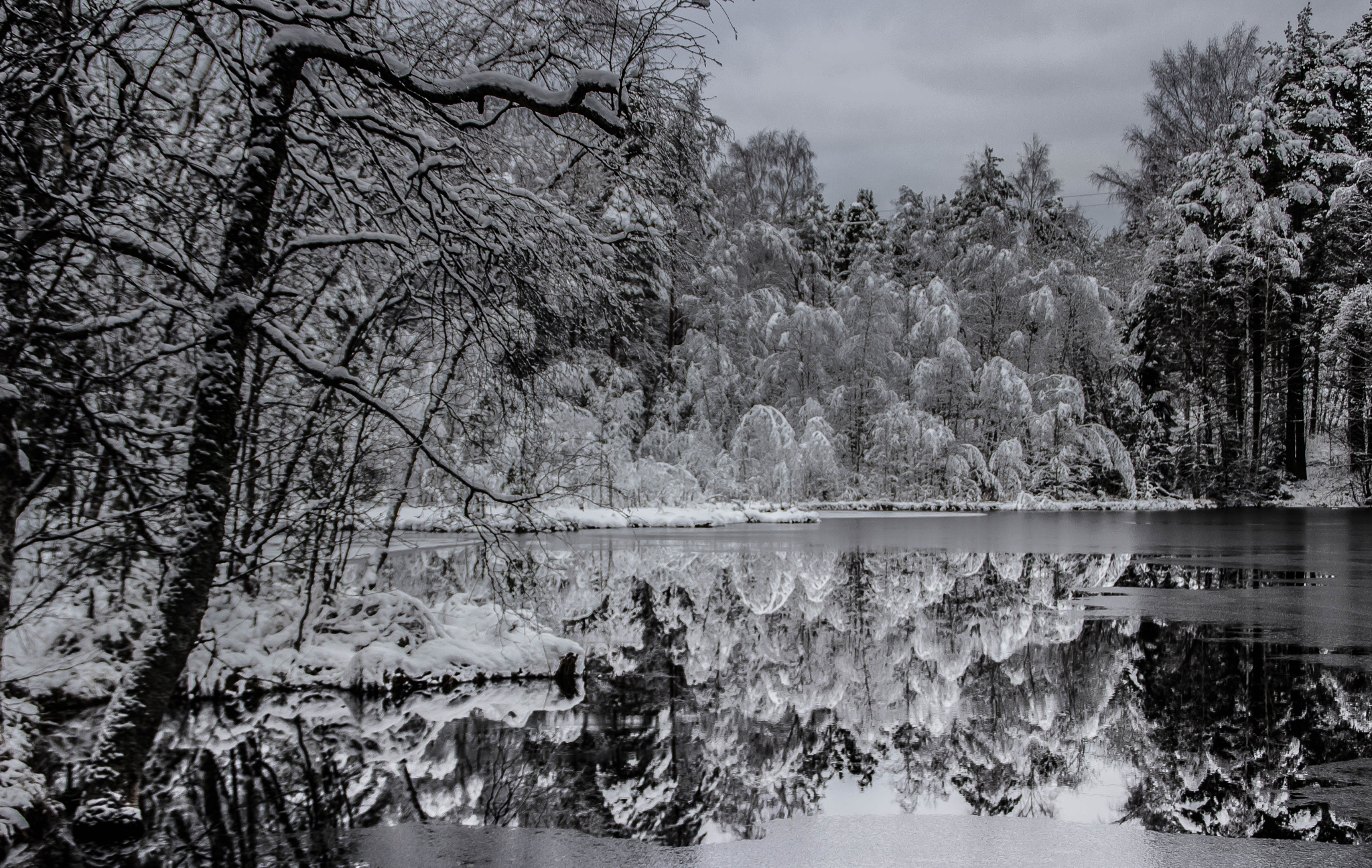 Winter arrives in a small pond ... by SakariPartio