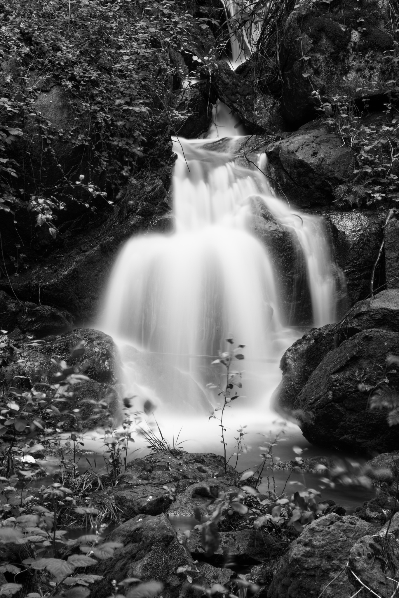 Tranquil Waterfall  by Craig Turner