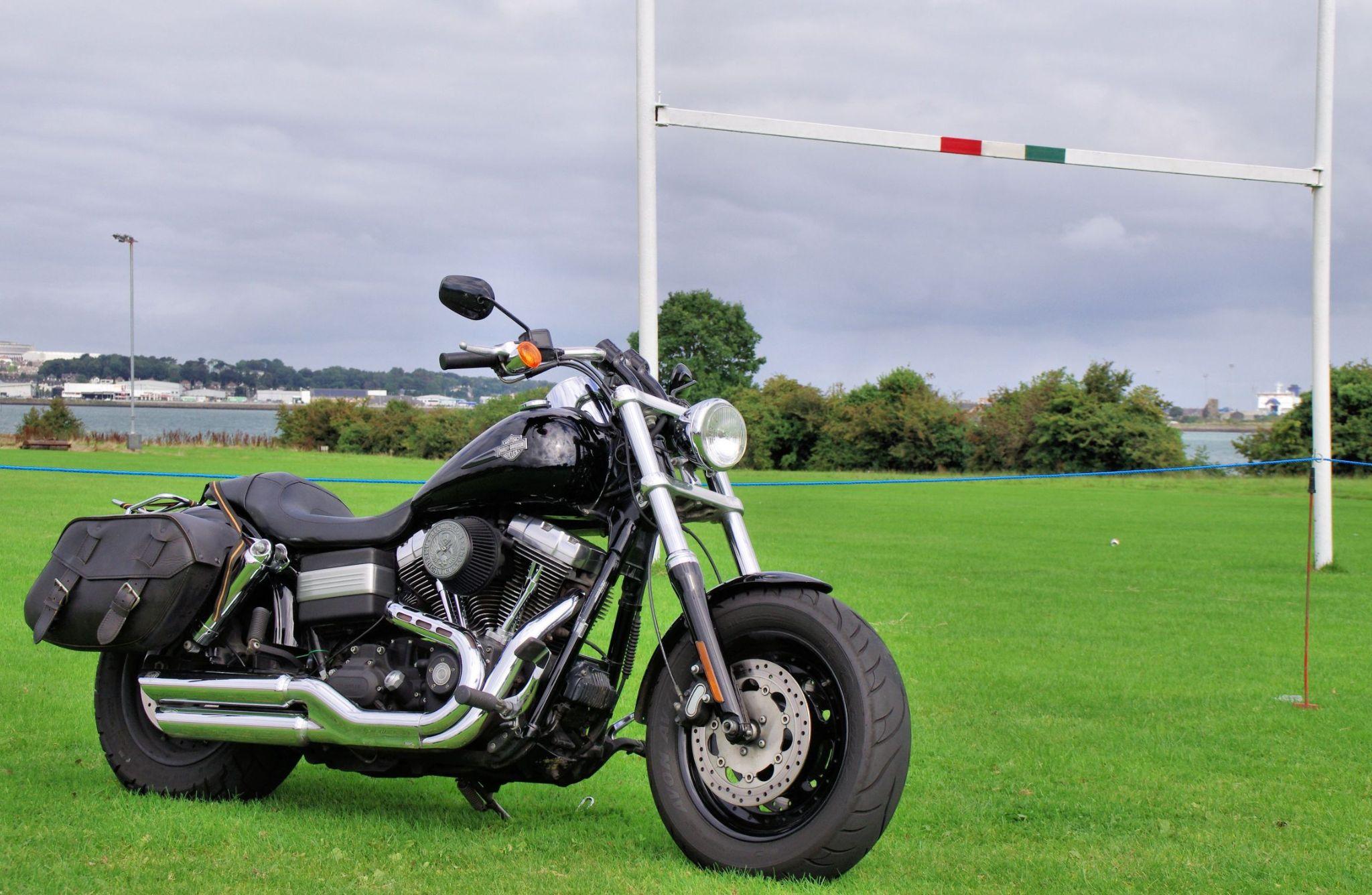 Rider required by David Stewart