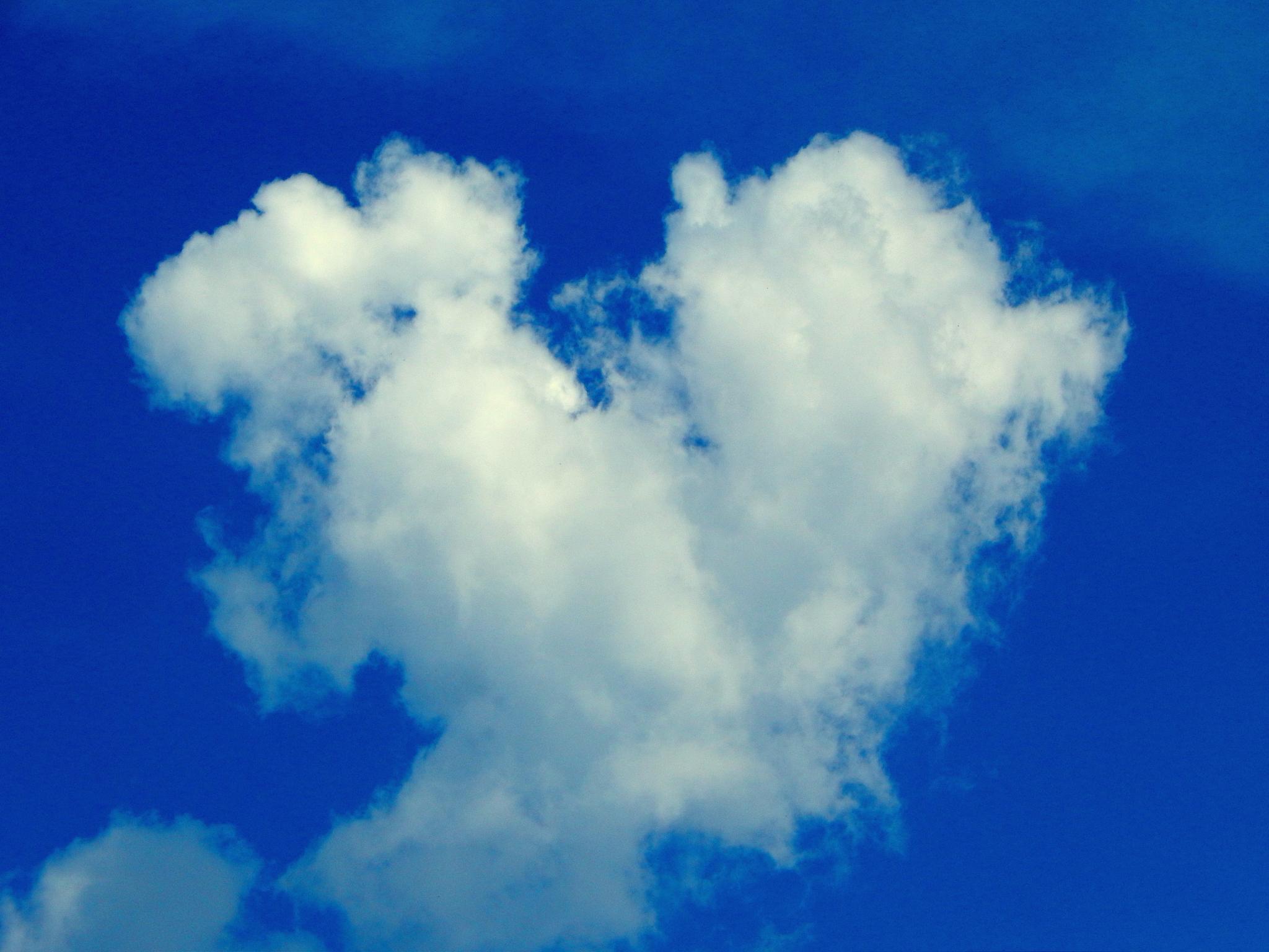 Clouds Heart by Utkarsh Shenvi