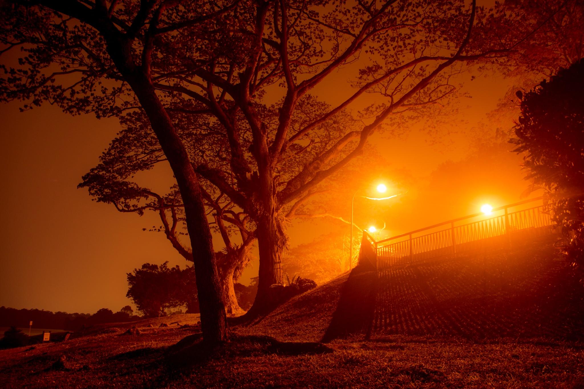 Haze in the night by Thomas Ho