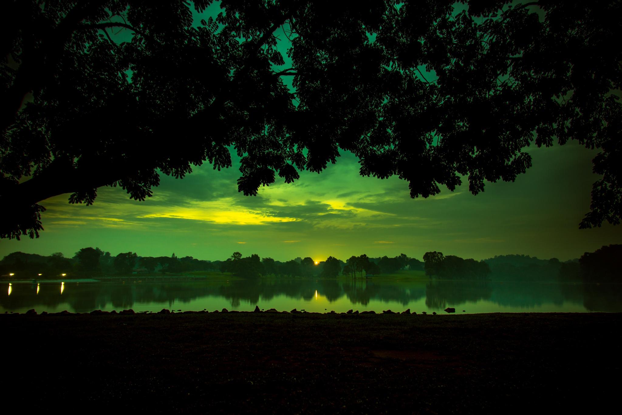 Backdrop by Thomas Ho