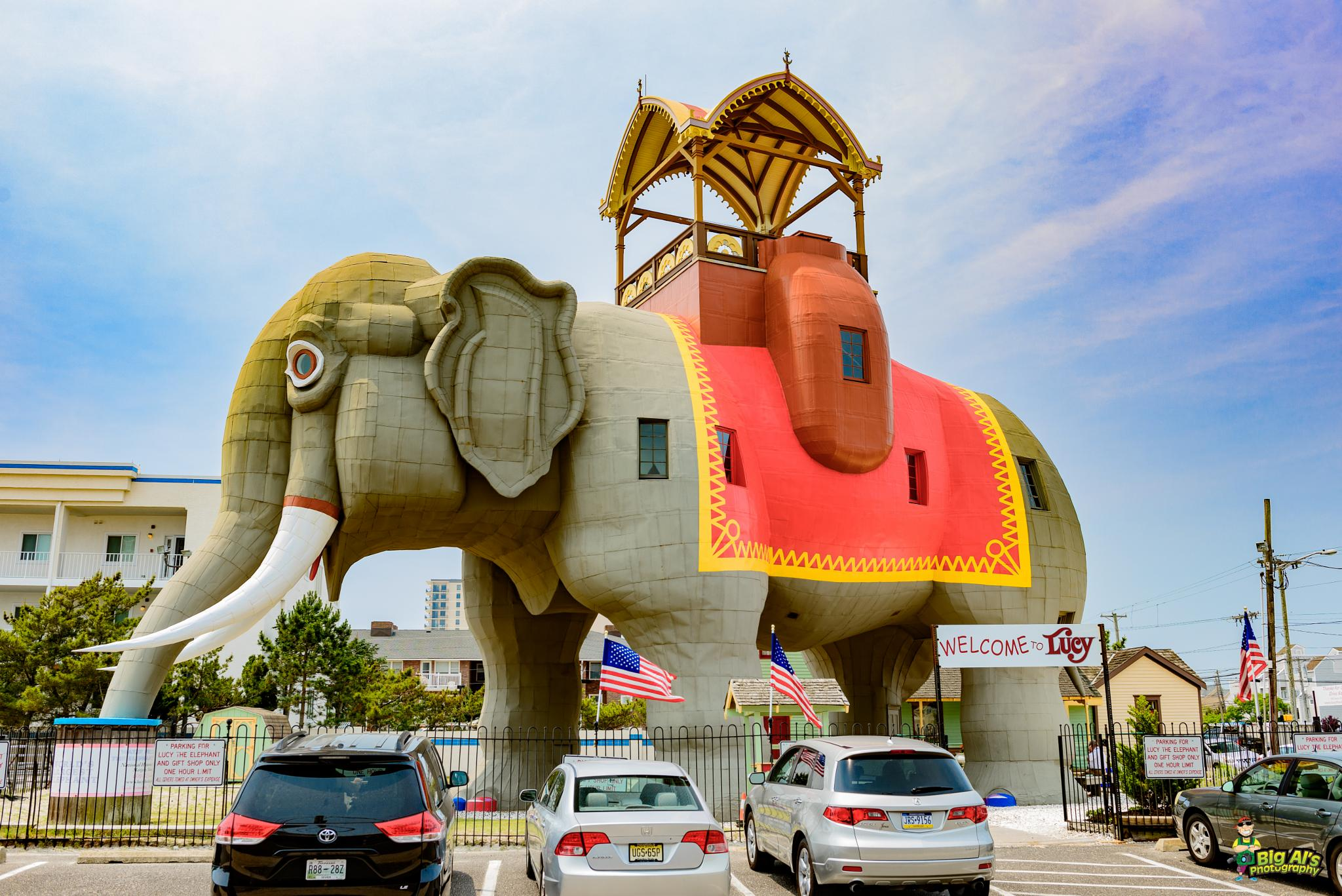 Lucy the Elephant by Allan Johnson