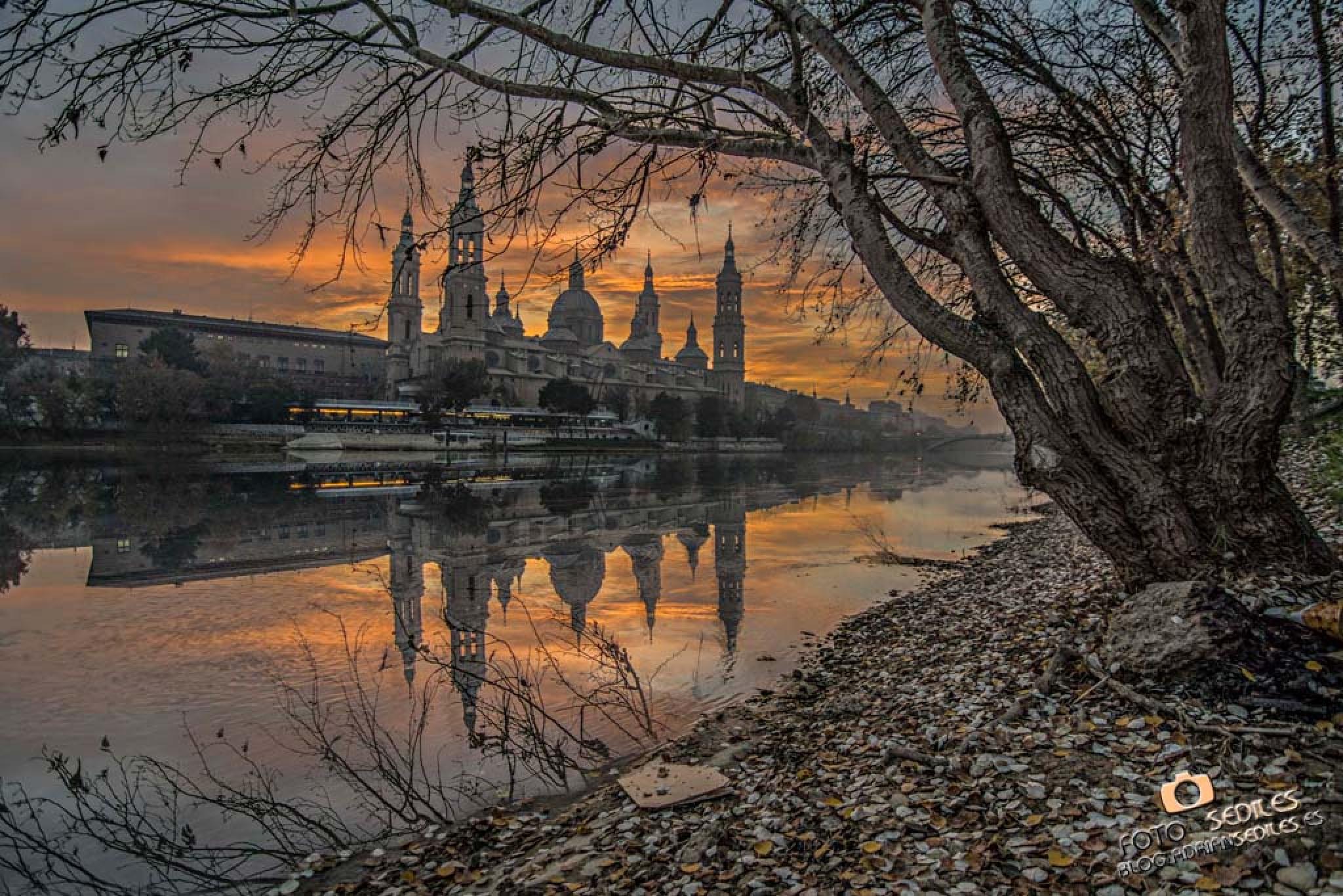Atardecer invierno en Zaragoza - Adrian Sediles Embi by adriansediles7