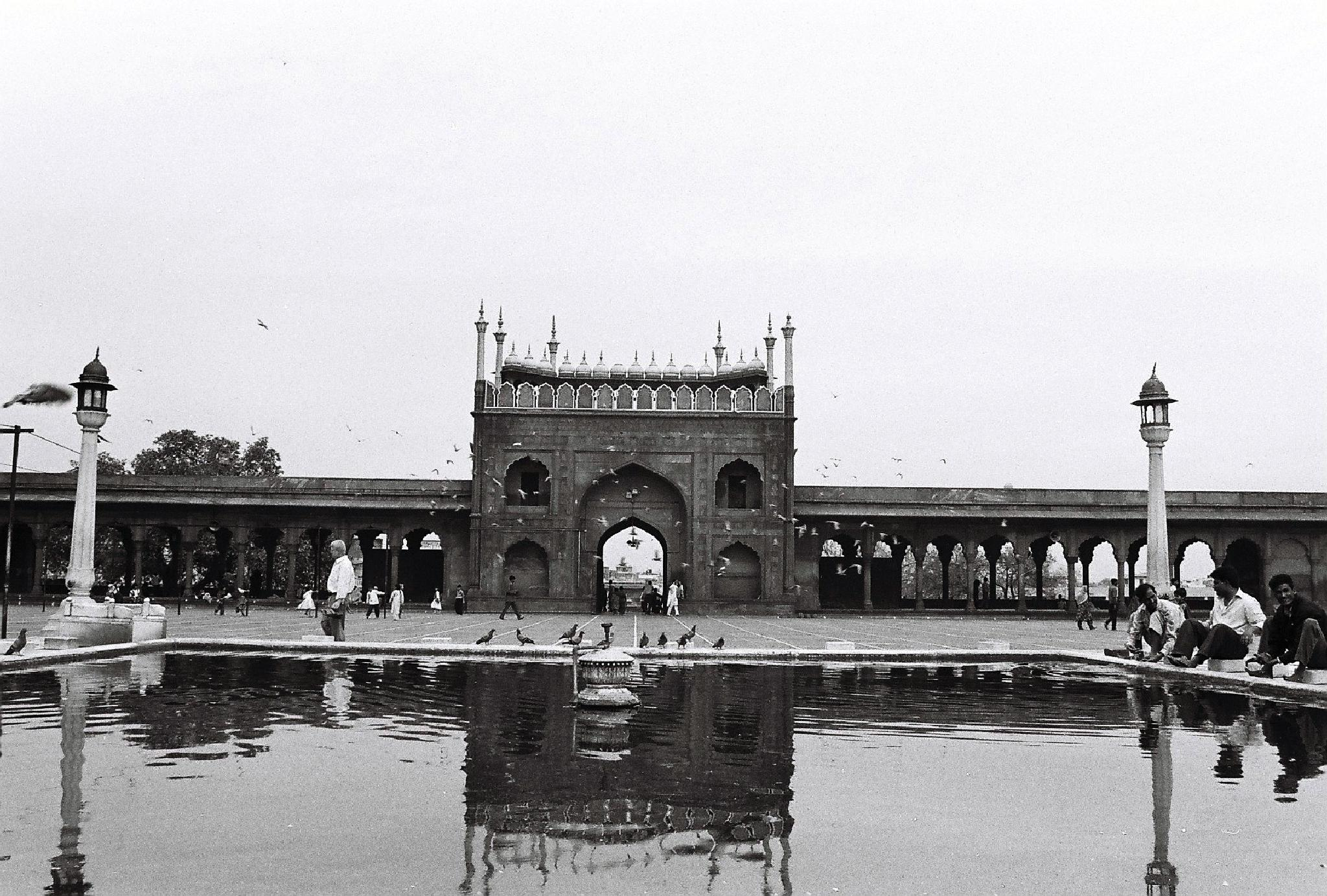 NEW DELHI by mohanchincholi