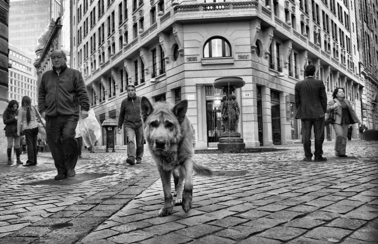 Santiago de Chile by Manuel Alejandro Venegas Bonilla