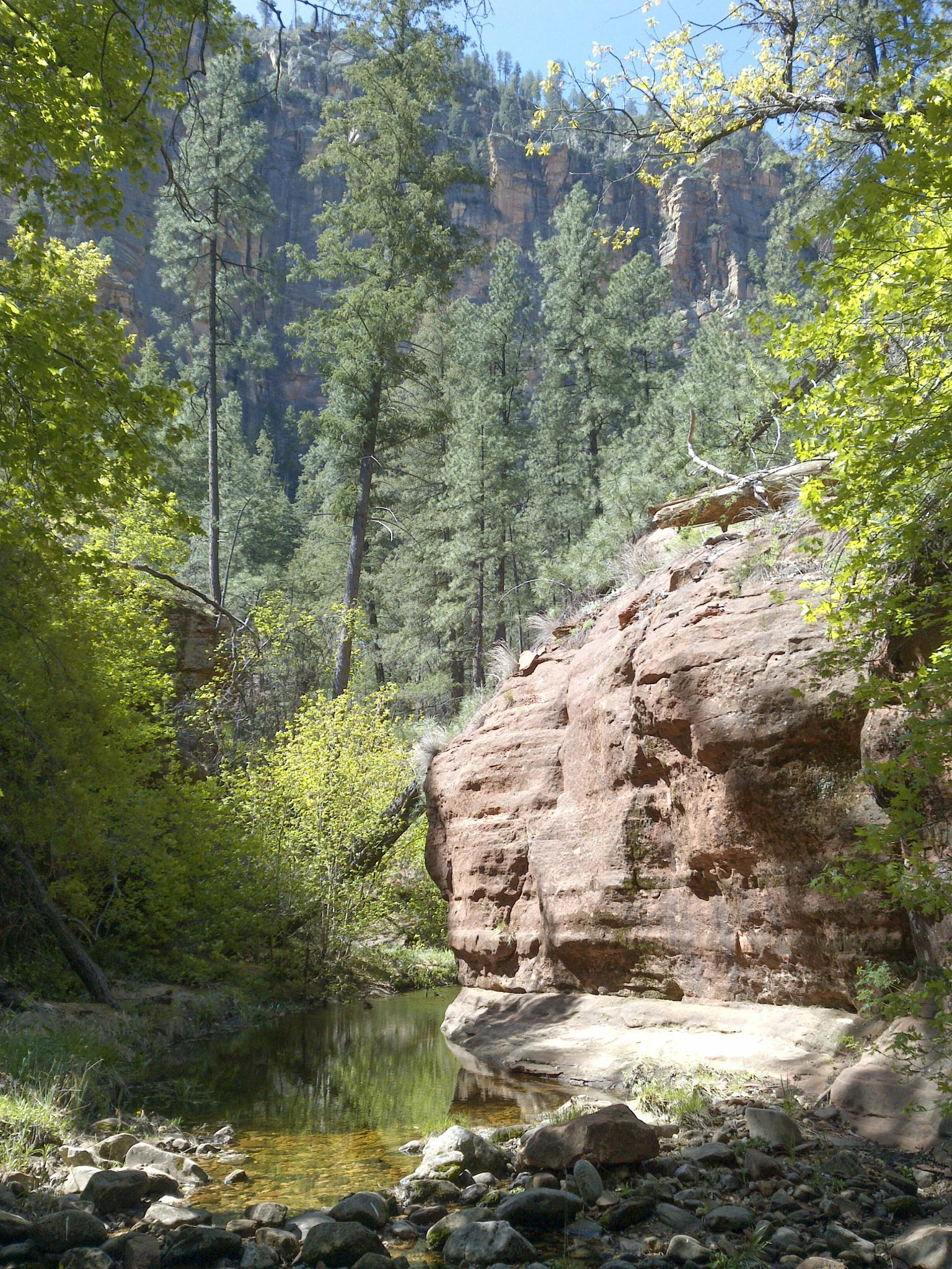 Secret Canyon Trail, Sedona, Arizona by davidpinter