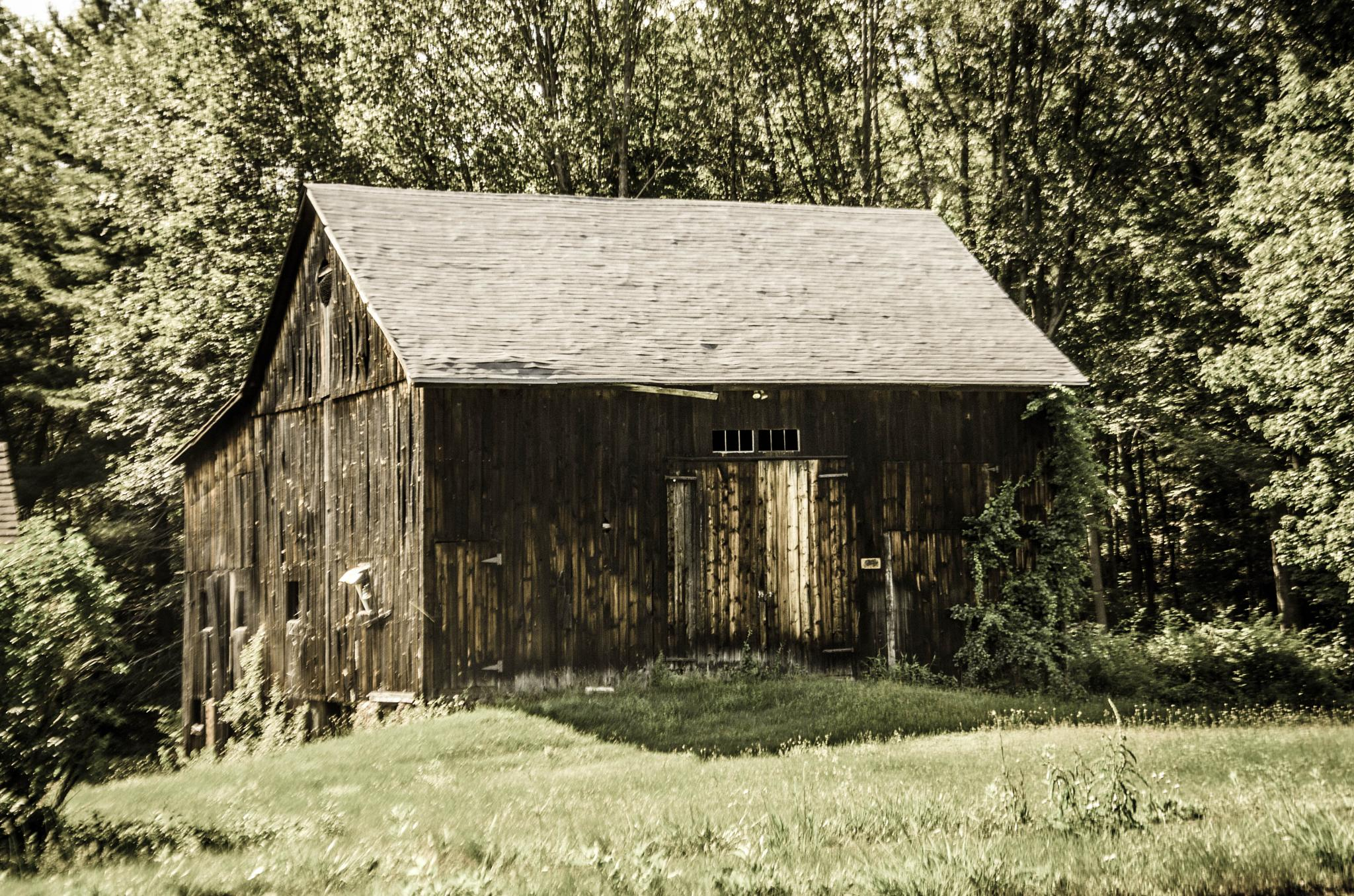 Old Country Work Shed by davidpinter