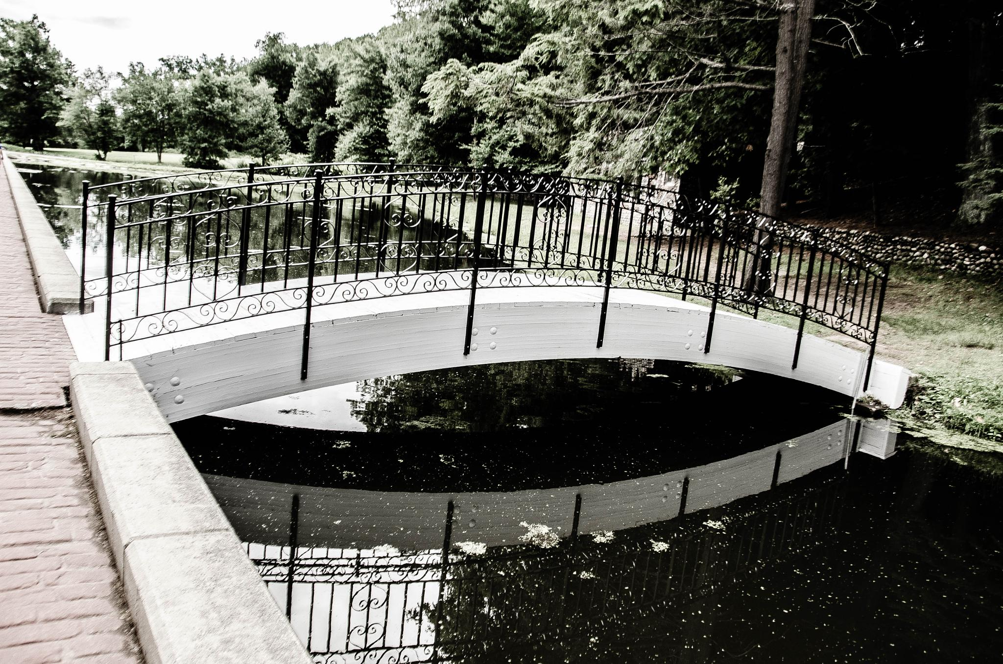 Reflection Bridge by davidpinter