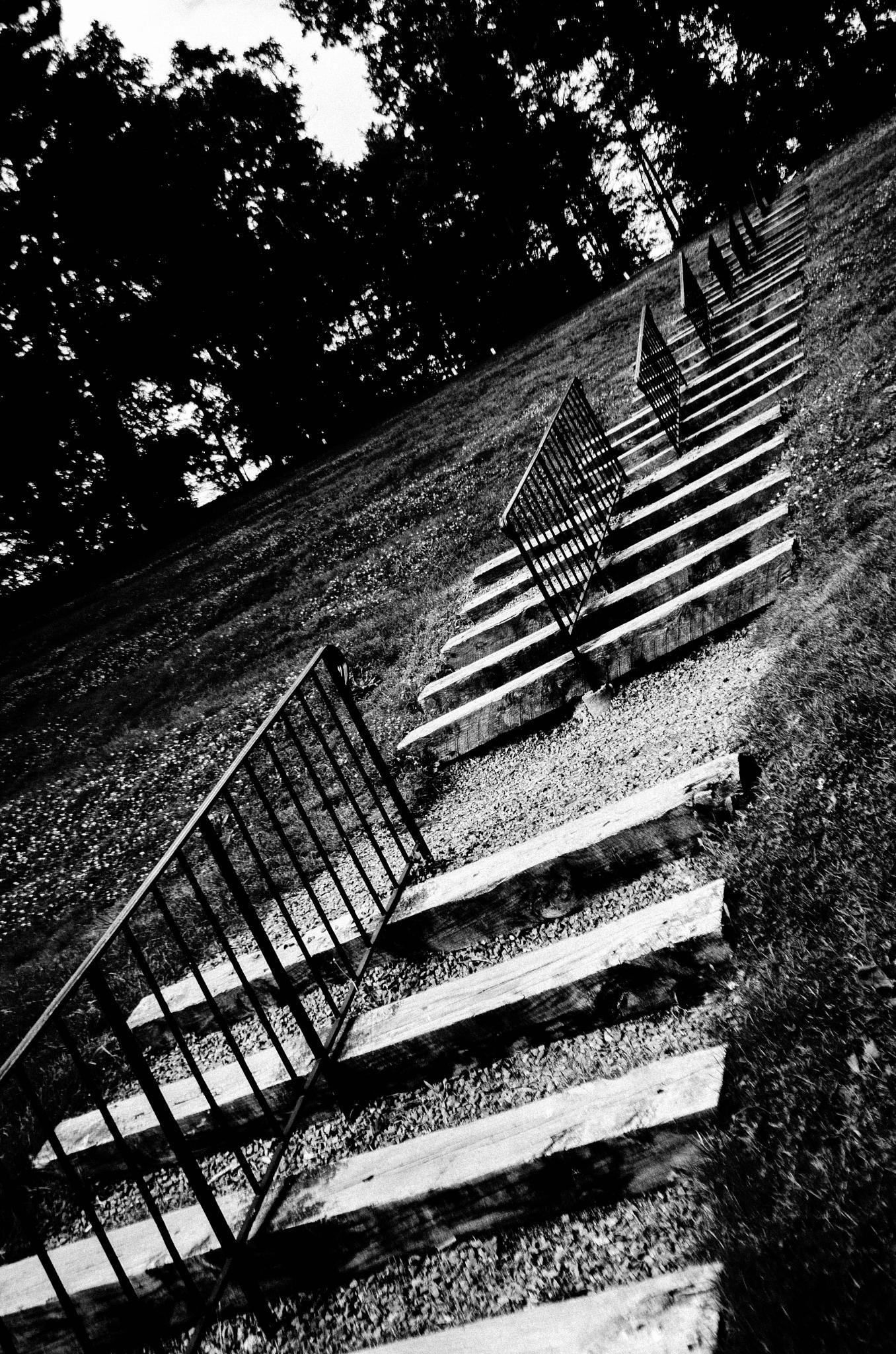 Amphitheater  by davidpinter