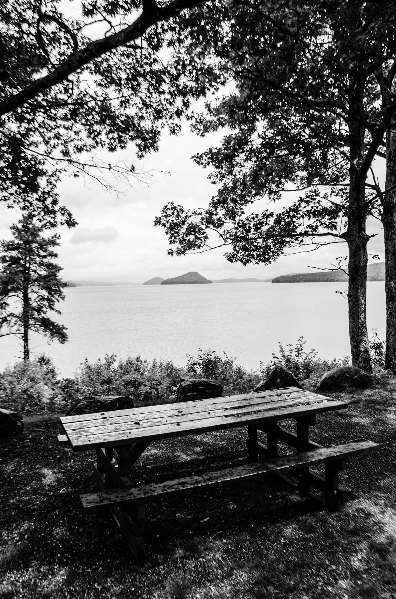 Picnic Table with a View by davidpinter