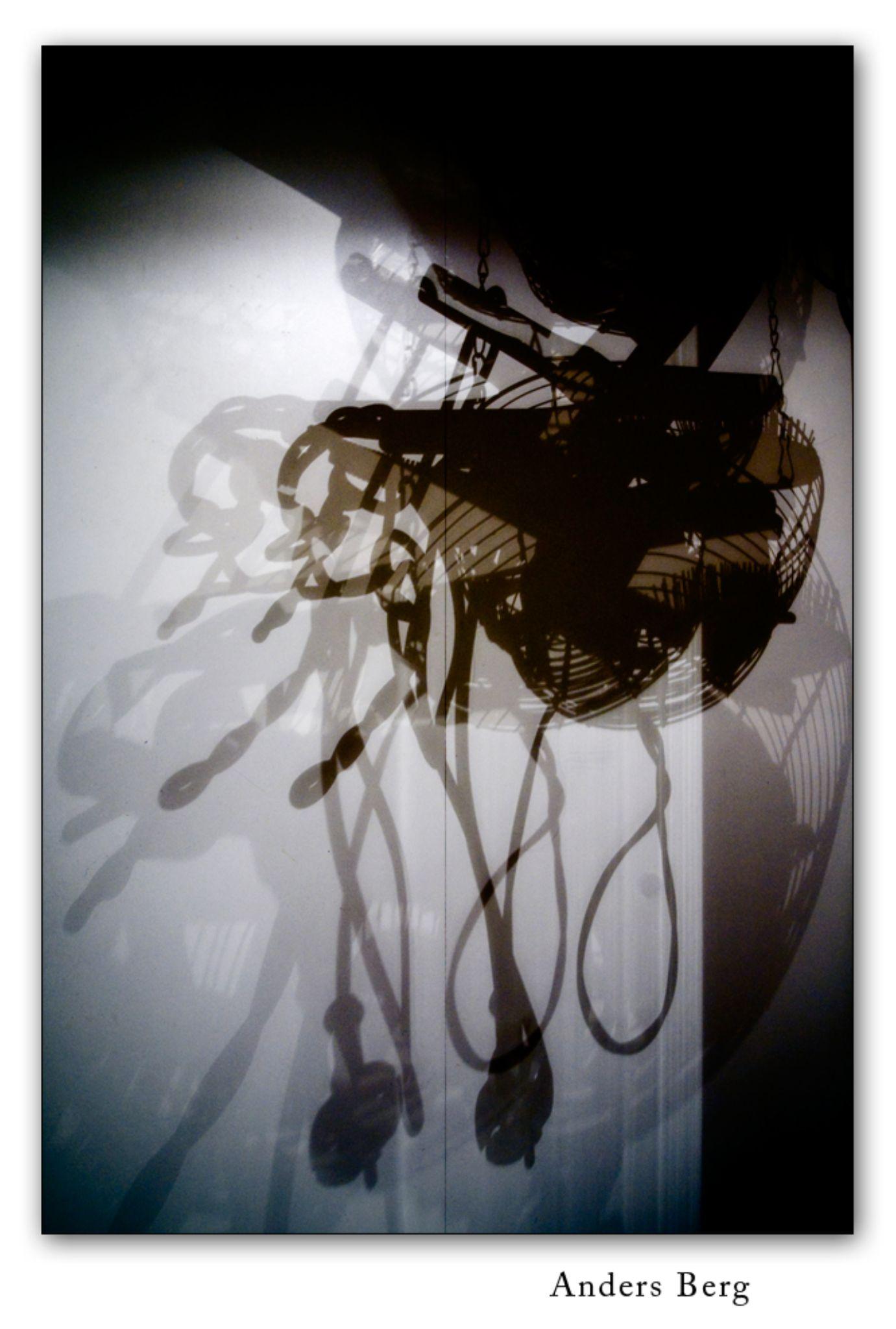 Shadow of Doubt by pandaanders