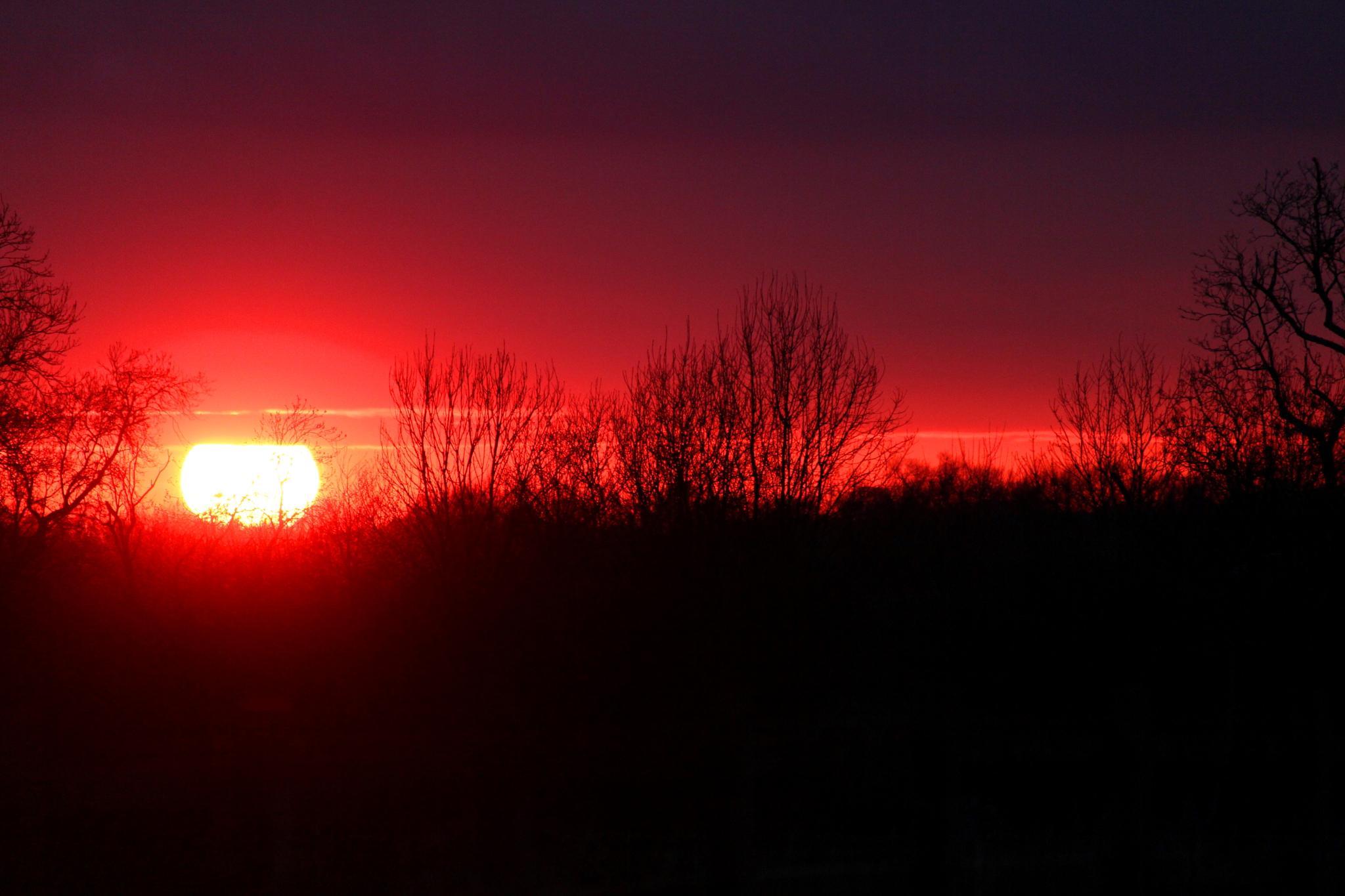 Bright eye red sky by Mofo