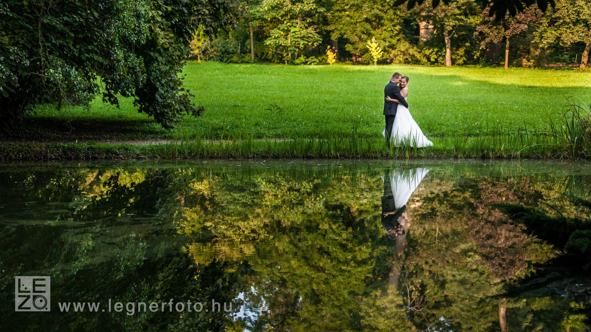 Reflection by zoltan.legner