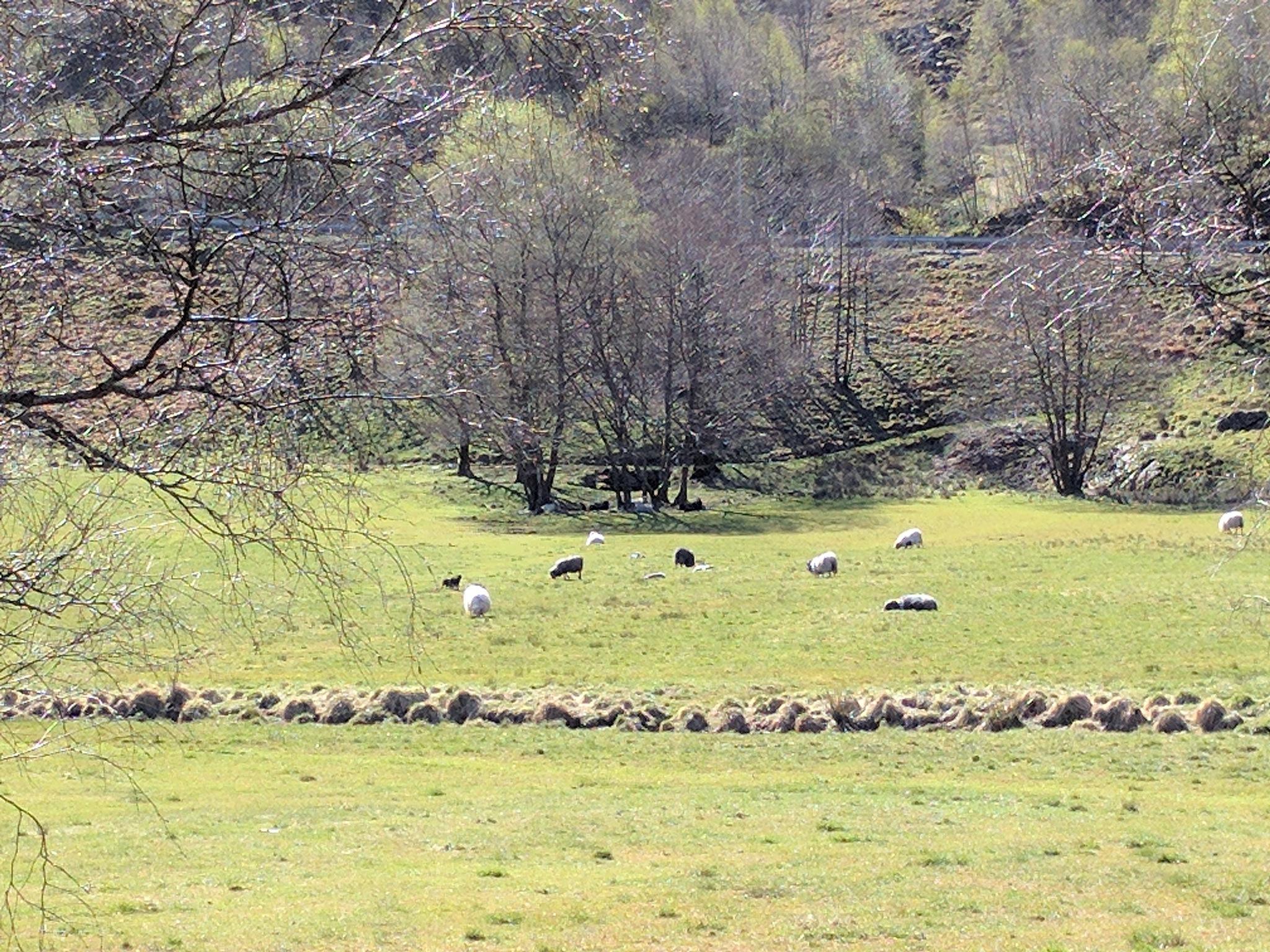 #On the farm by marit