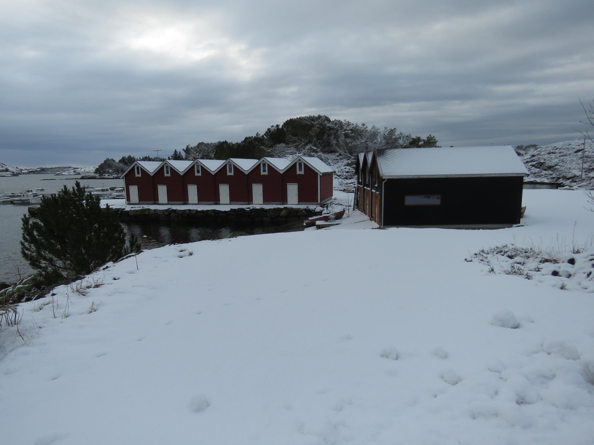 #Winter by marit