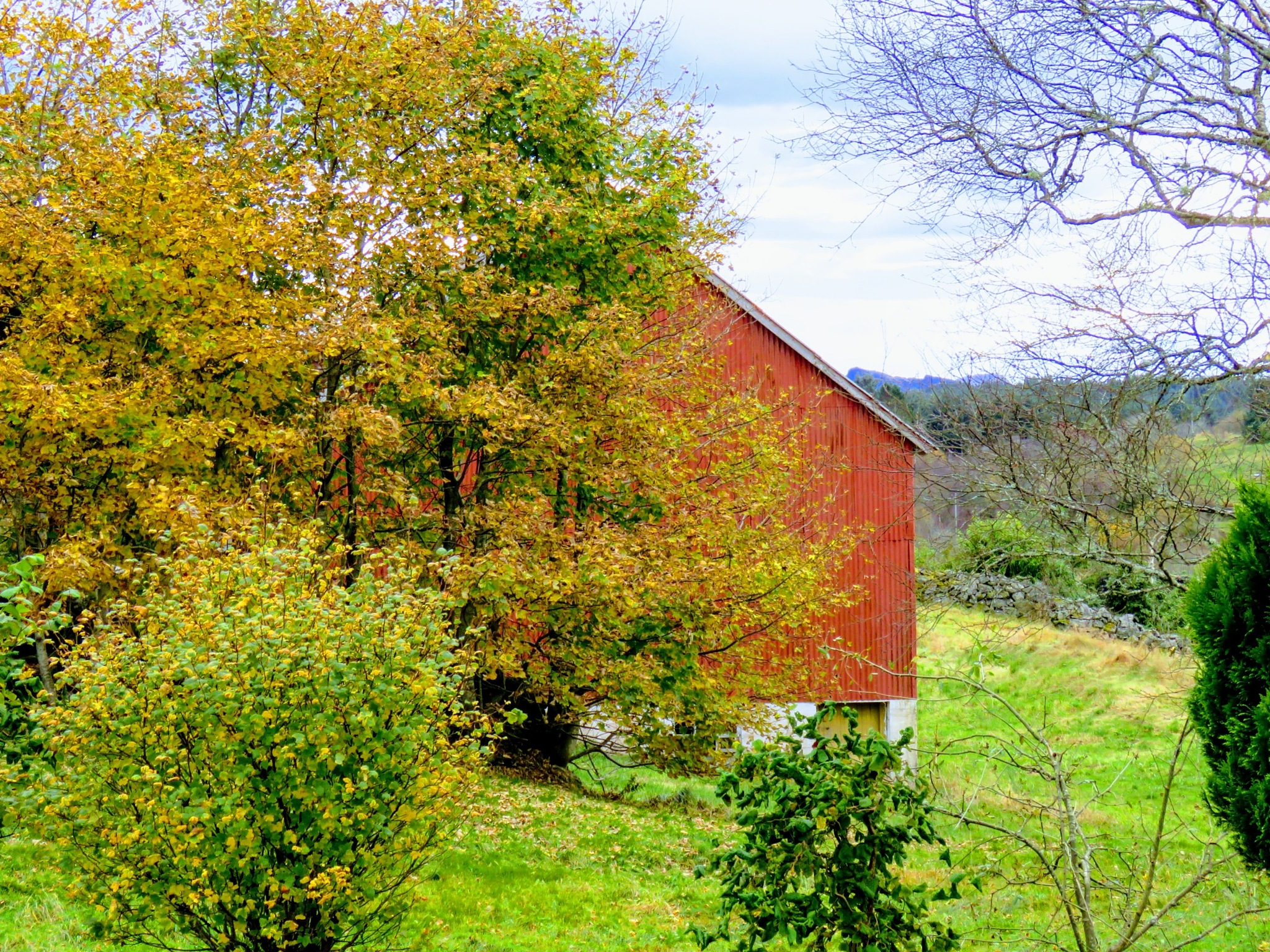 #Old barn by marit