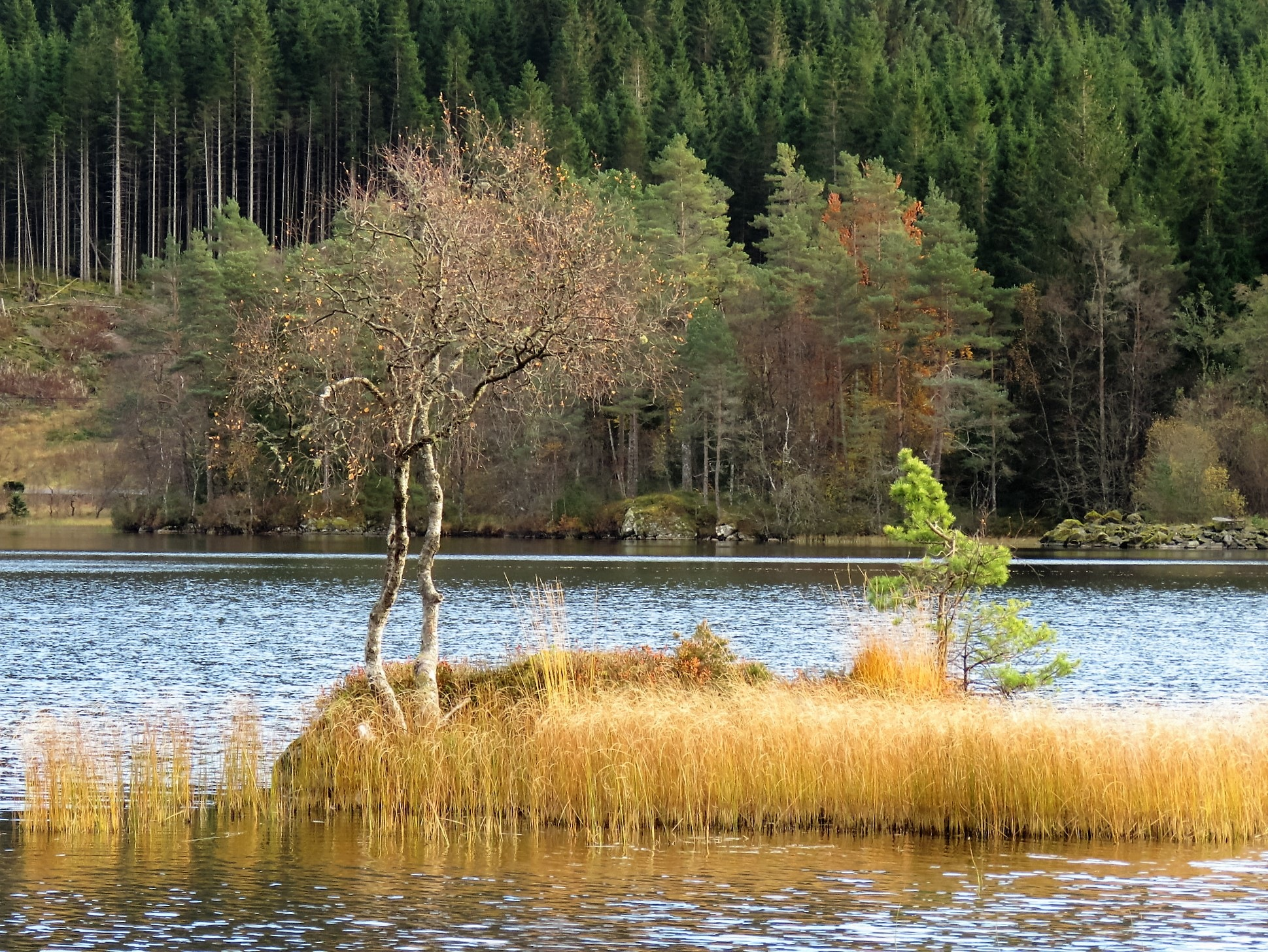 #Autumn by the lake by marit