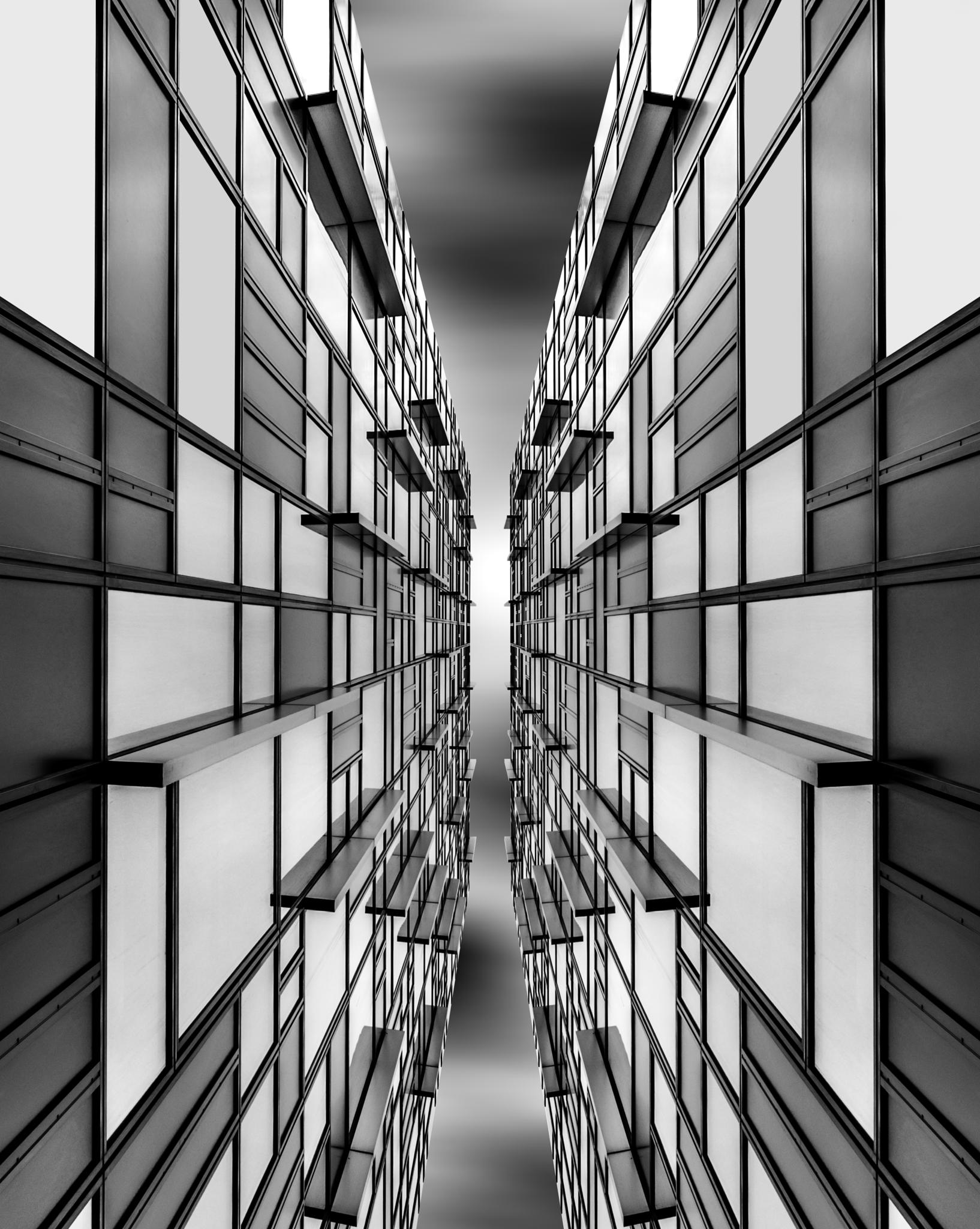 Mirror Image by Karl Shepheard
