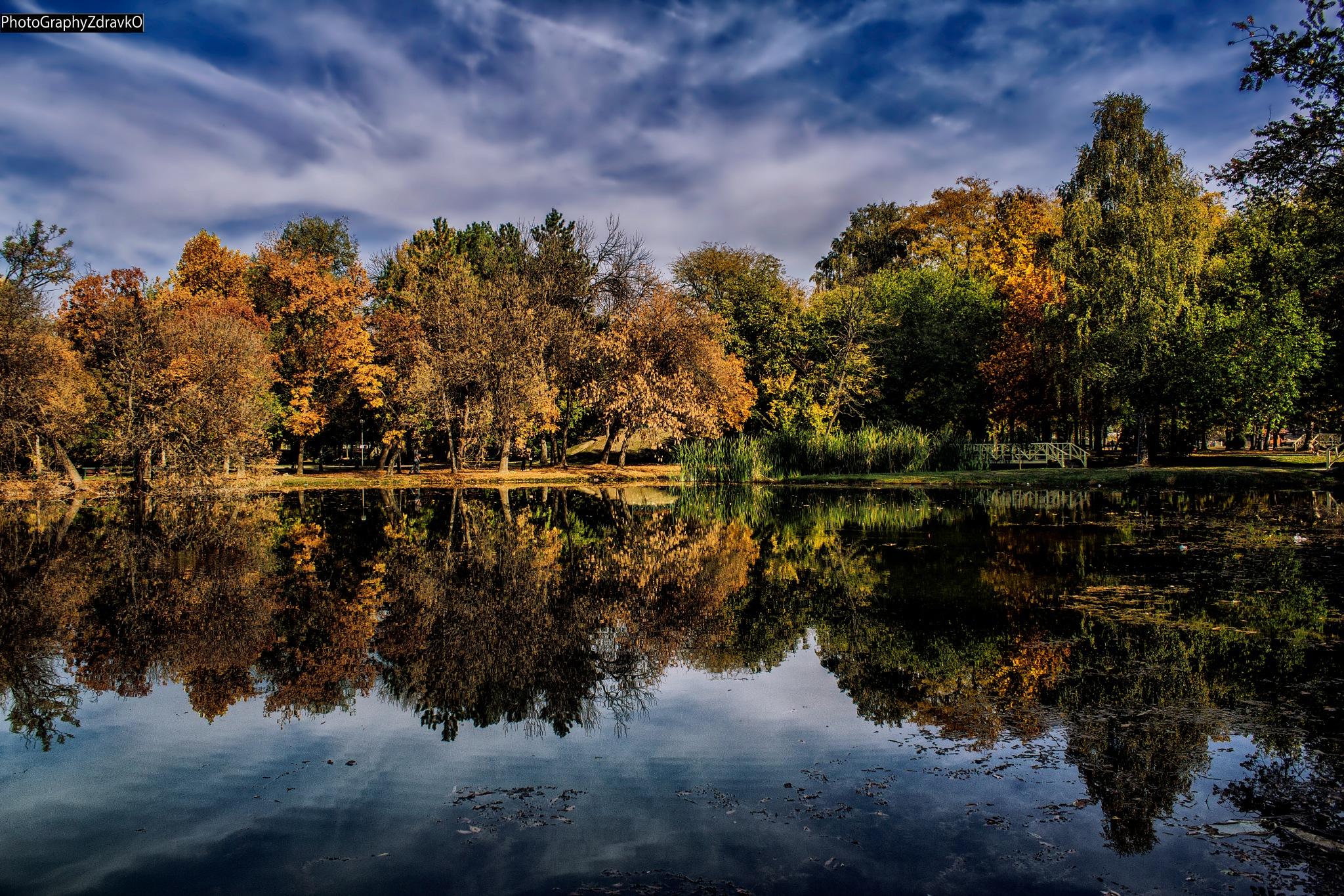 Reflection Nature by zdravko.petkovski.3
