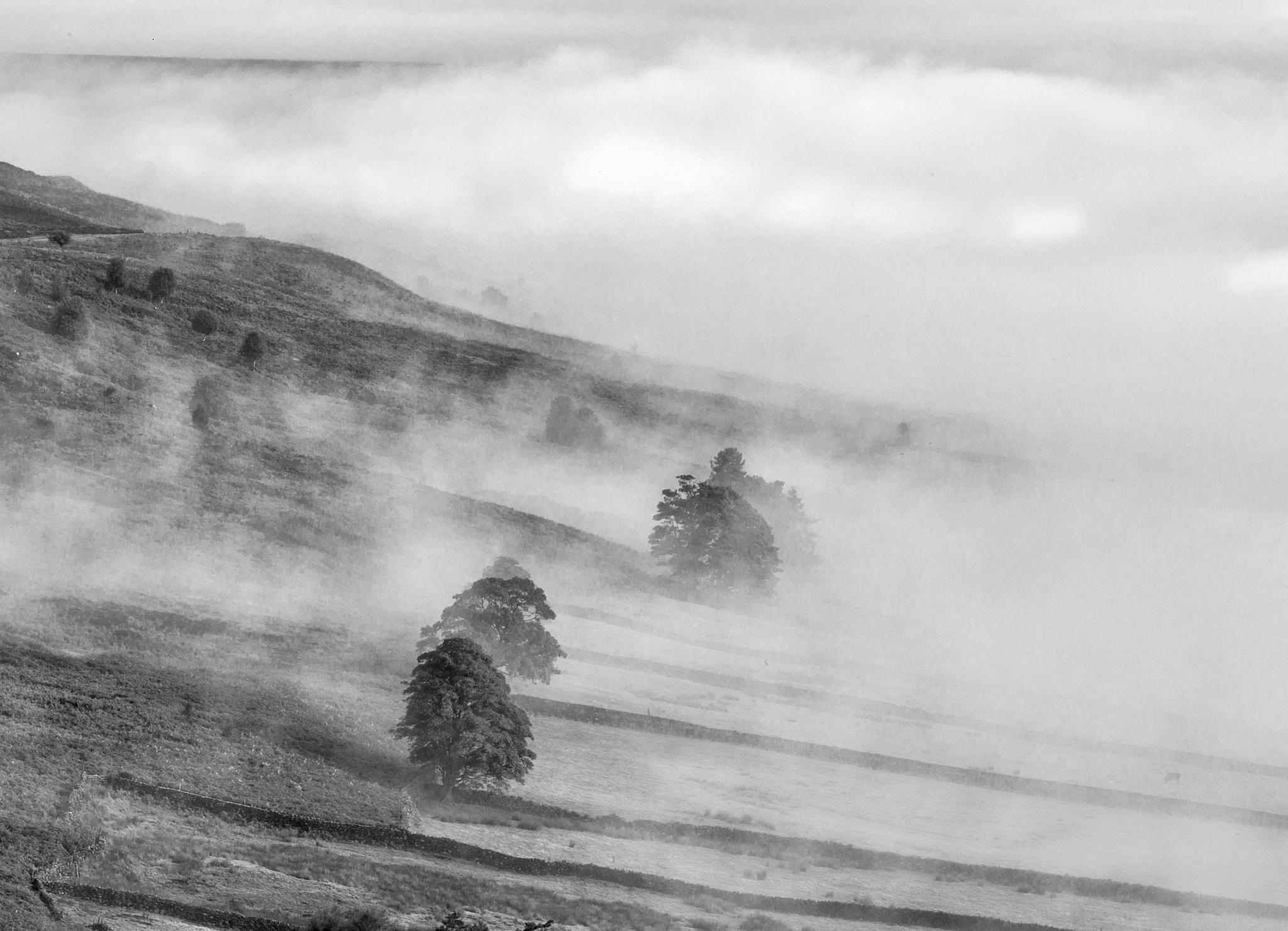 A fog over Fryup dale  by Trevor Shelley