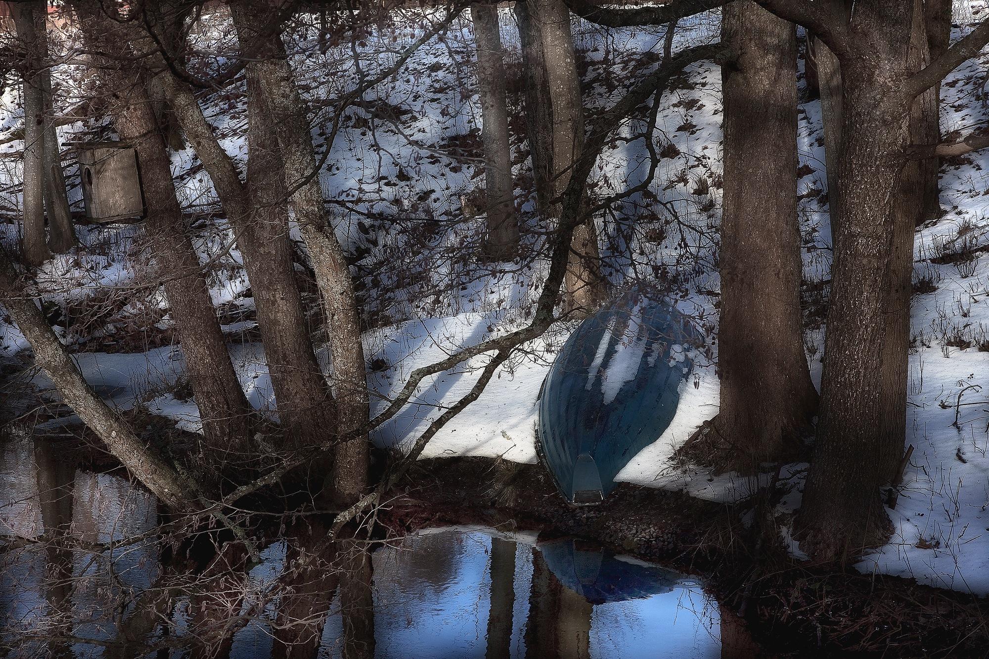 La bellezza della natura e`che non devi pensarla. by enrico.seri.16