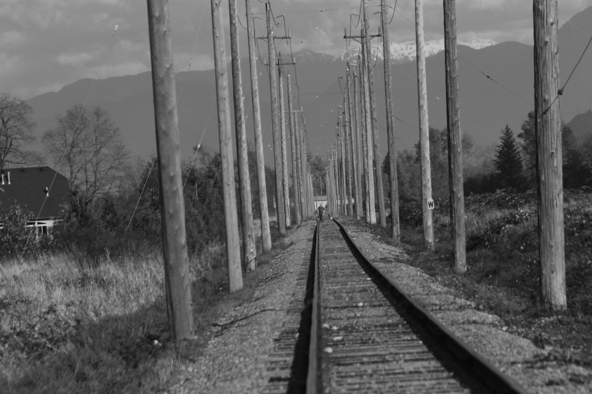 Train Tracks by henrywall63