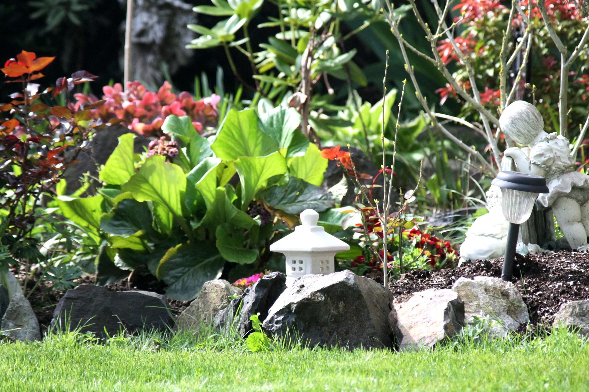 A little corner of my garden. by henrywall63