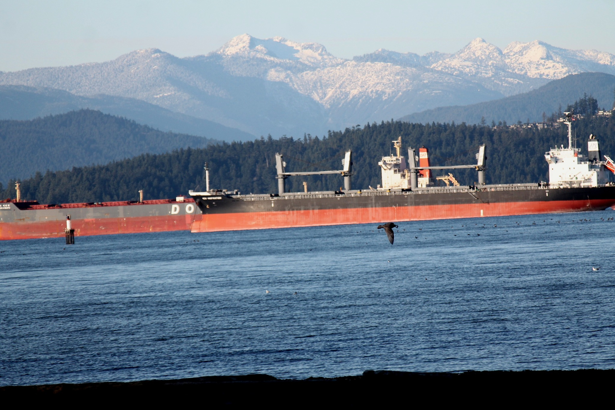Waiting to get into Vancouver Harbour. by henrywall63