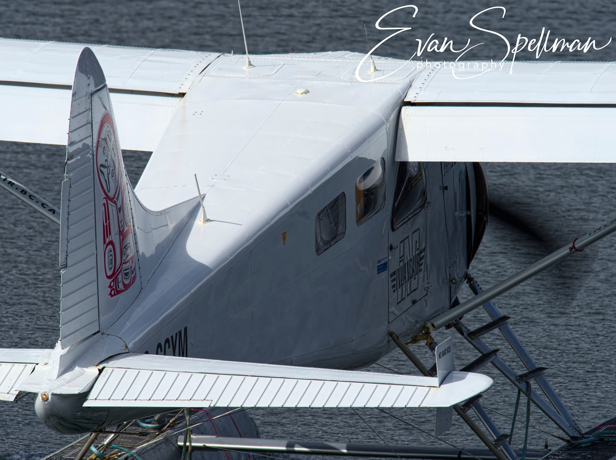 leaving the dock-engine running by Evan Spellman