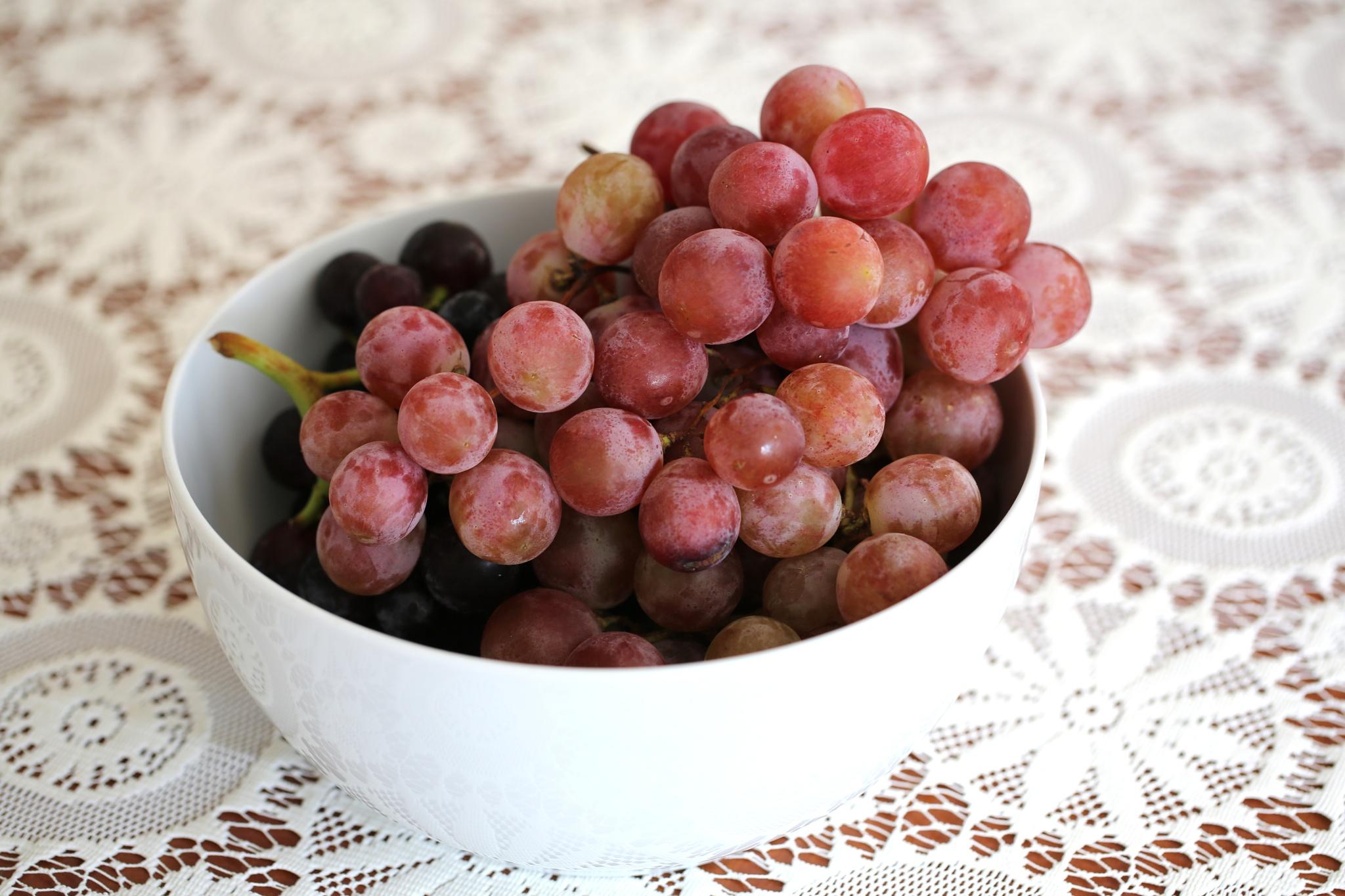 Red Grape by Atila_Yumusakkaya