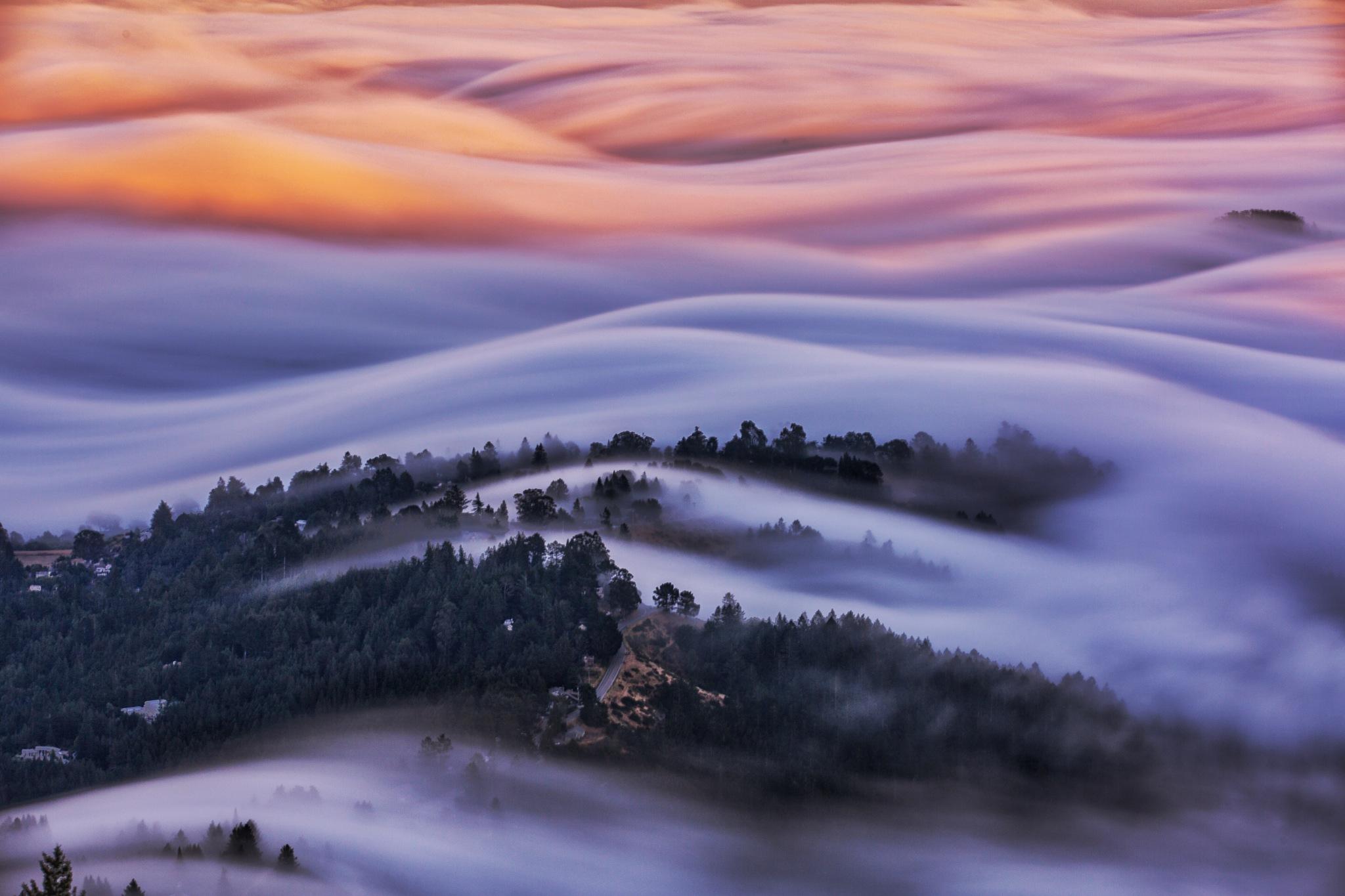 Silky Flow by Hanif Khosravi