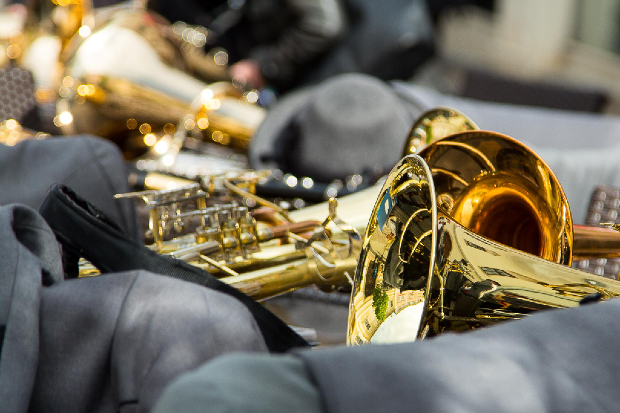 Photo in Macro #trumpet #gold #silent #music #firefighters
