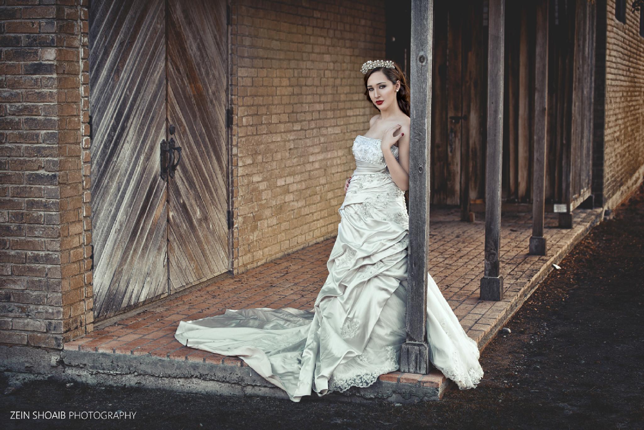 the bride [iiv] by Zein cheaib (DSLRNATION)