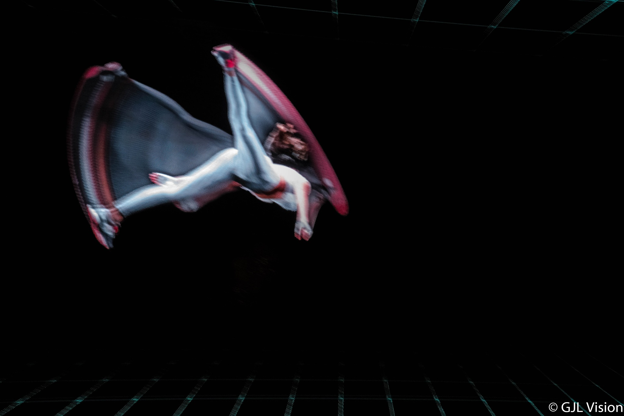 Holigram Dancer by gilbert.lopez.14