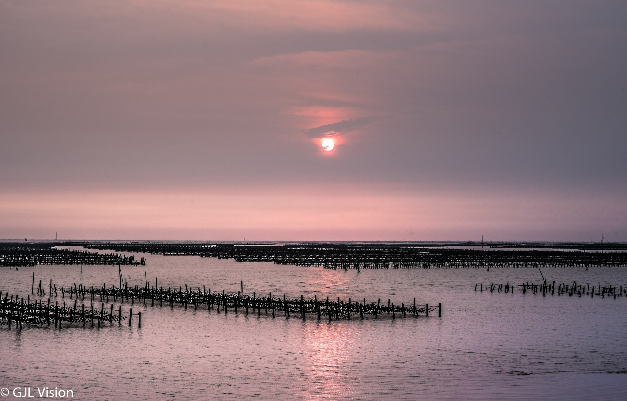 Oyster Farm by gilbert.lopez.14