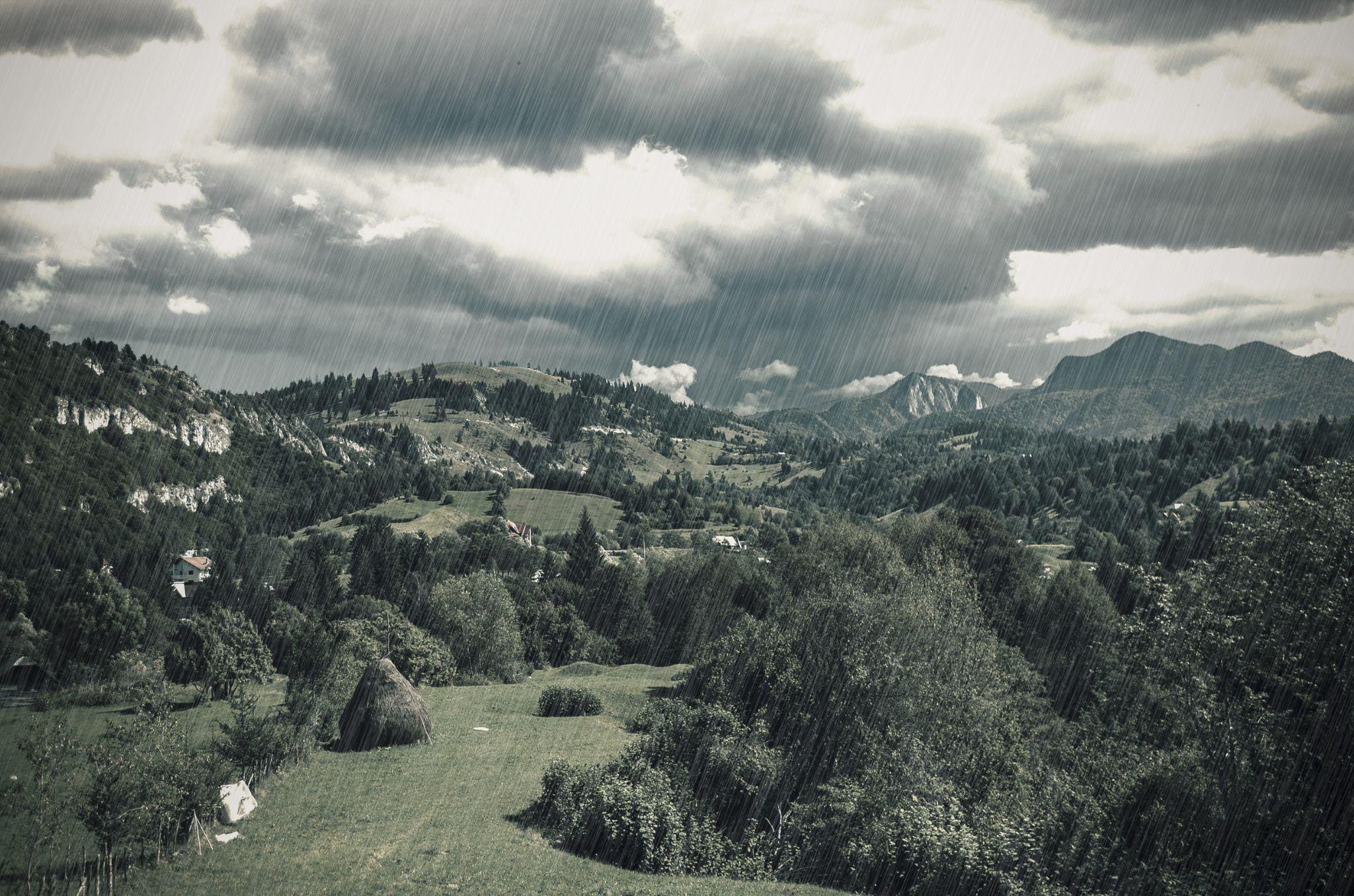 Downpour by Radu Florin