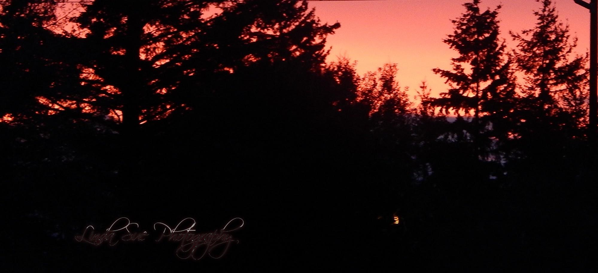 Good mornng Sun by LindaSuePhotography