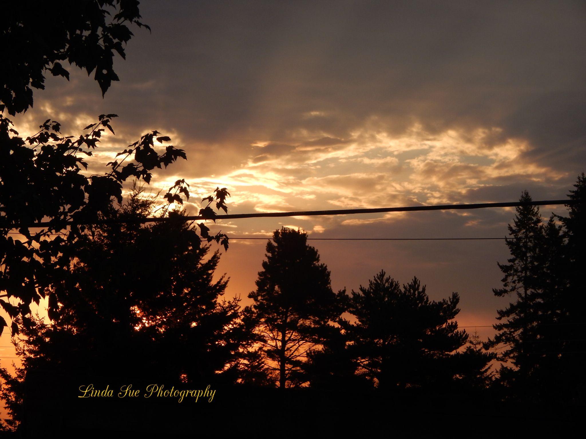 """Morning """"Fall"""" Sunrise by LindaSuePhotography"""