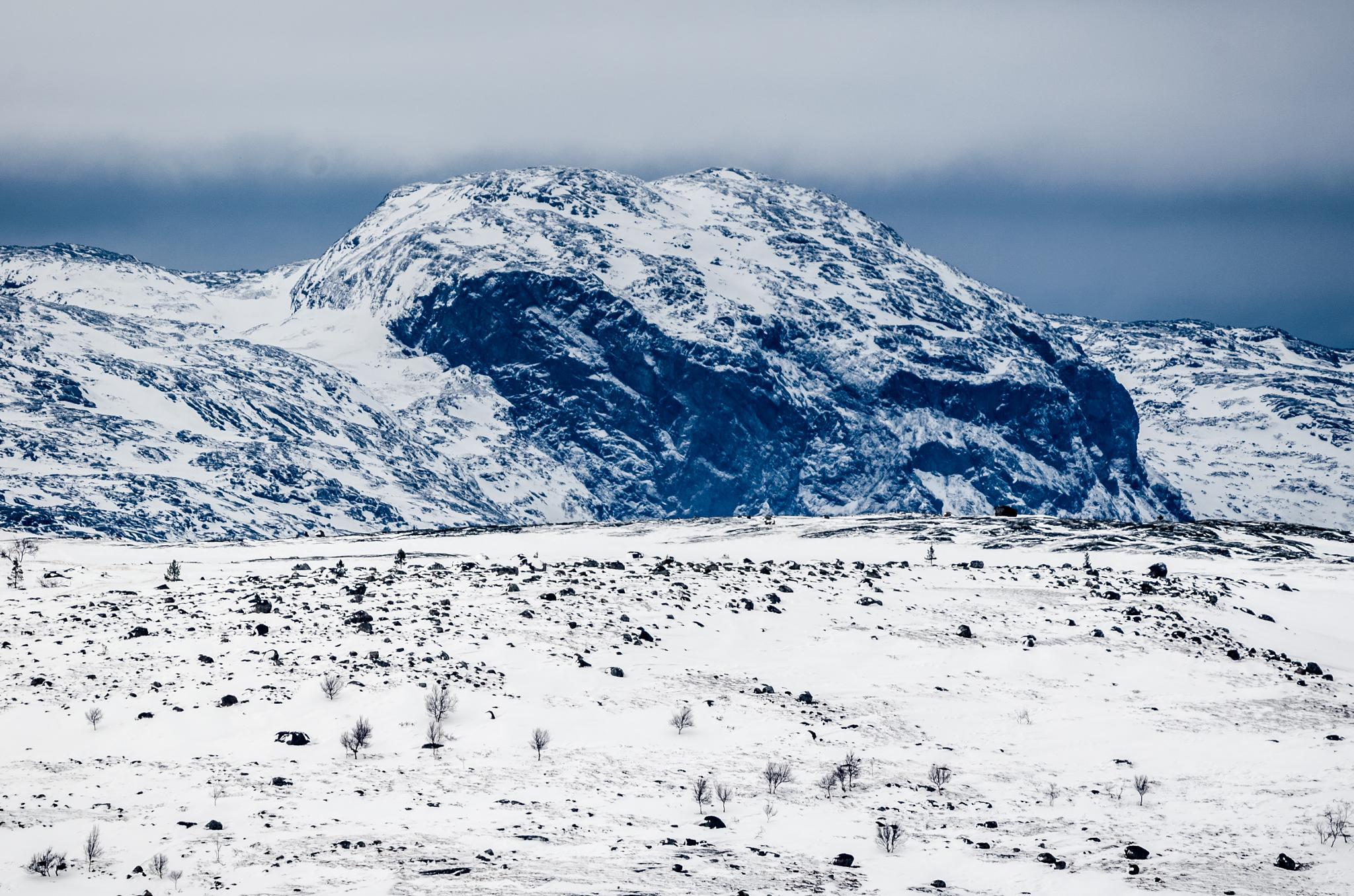 Norwegian tundra by Roy Haakon Friskilae