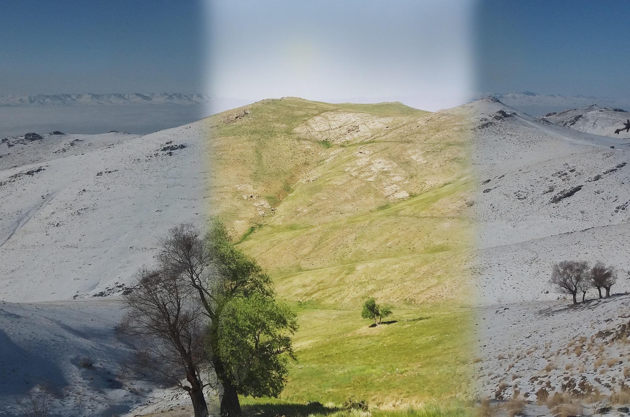 winter.espring&winter by jamal.abasi.90