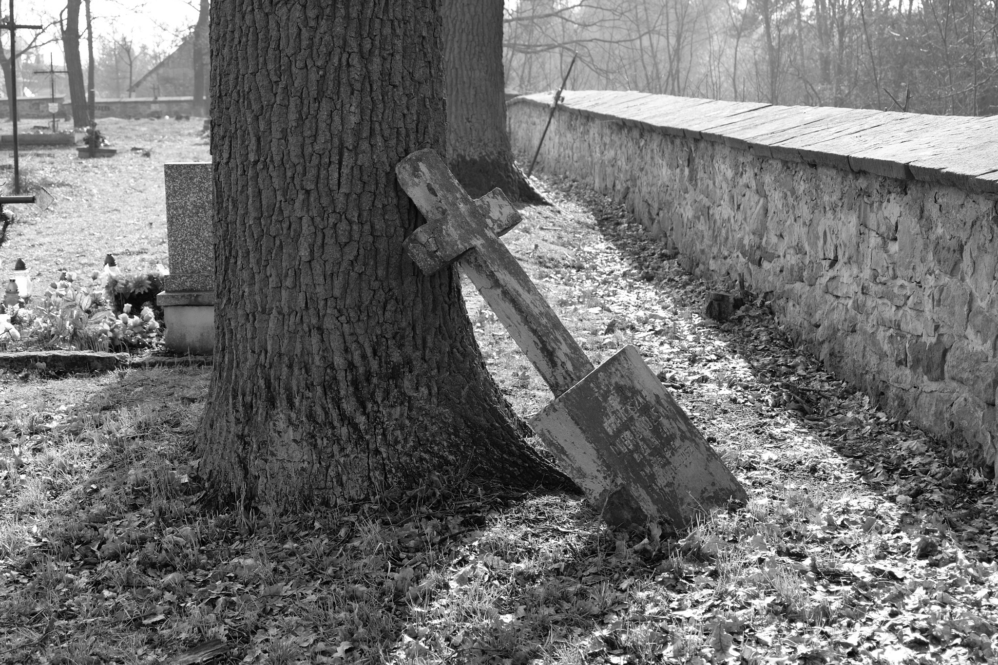 dumped cross by Rafał Ciok