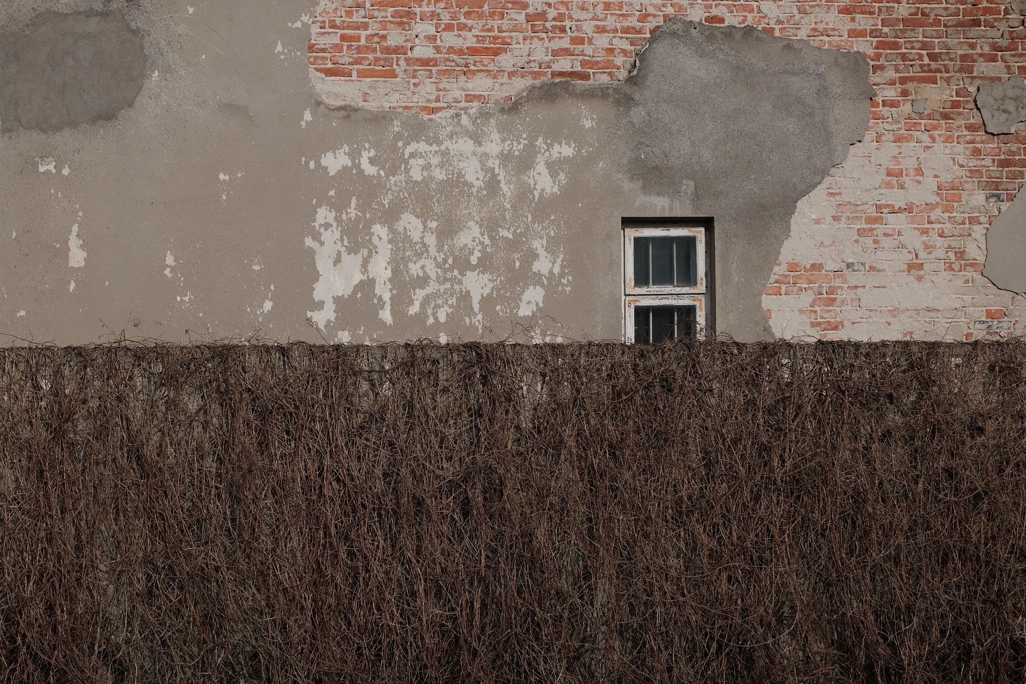 a window by Rafał Ciok