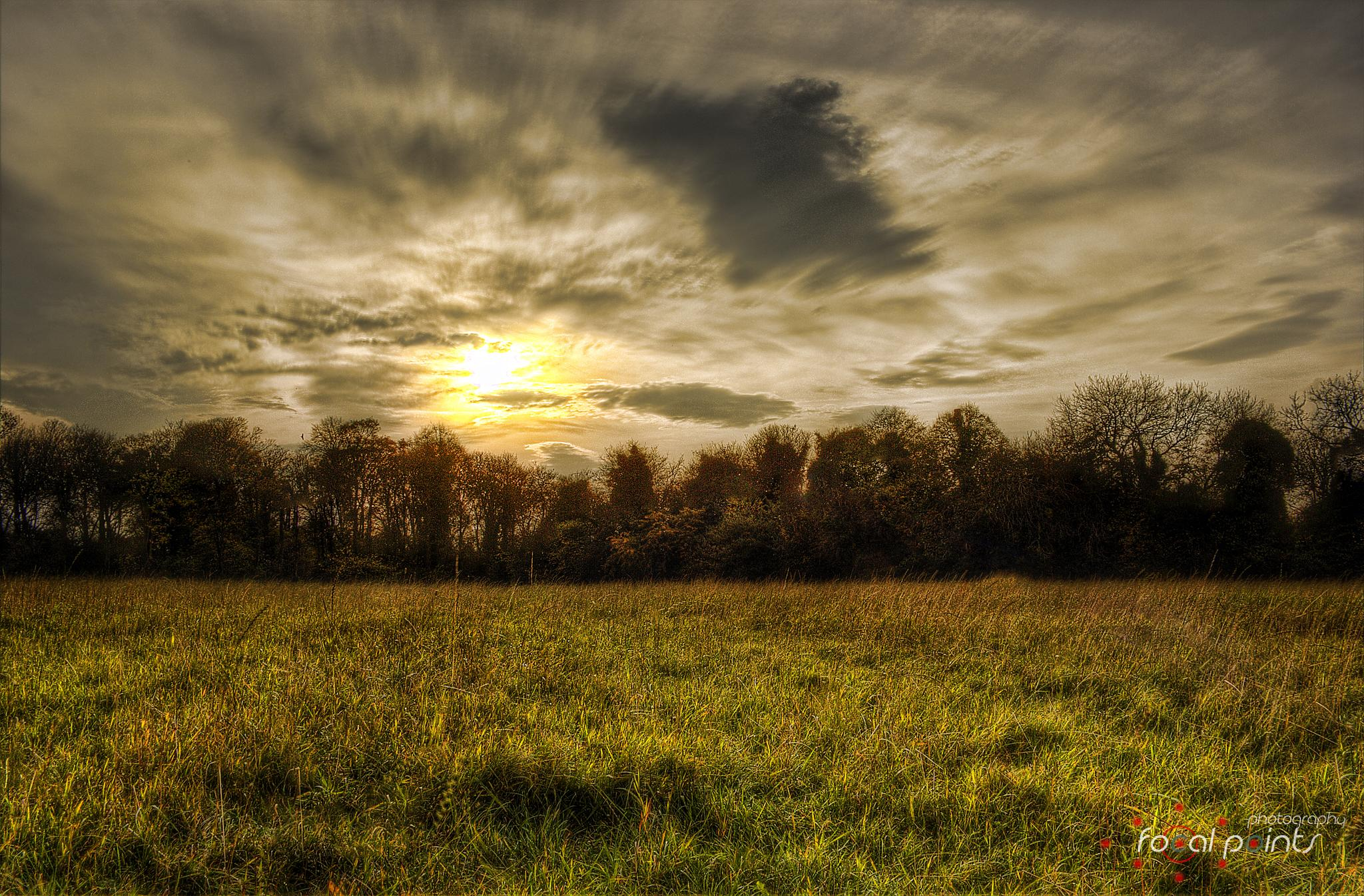Photo in Landscape #sky #clouds #field #grass #sunset #trees #landscape #scotland #hdr