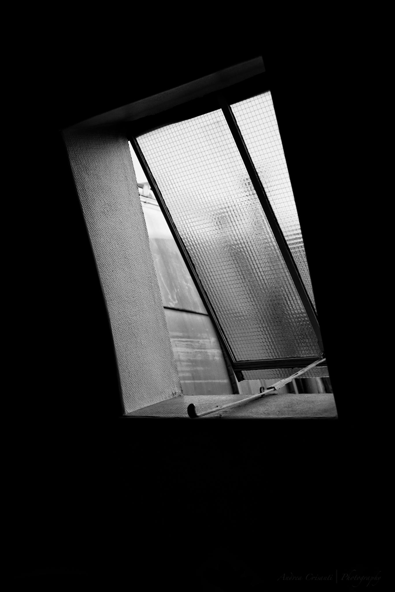 Through the skylight by andreacrisanti