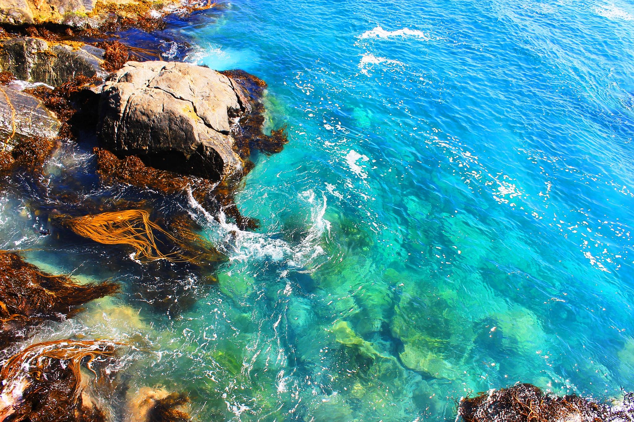 water by gabriela goñi