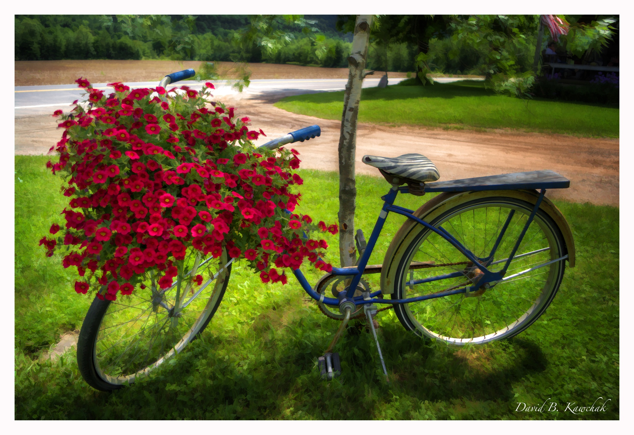 Bike and Flowers by davidbrucekawchak